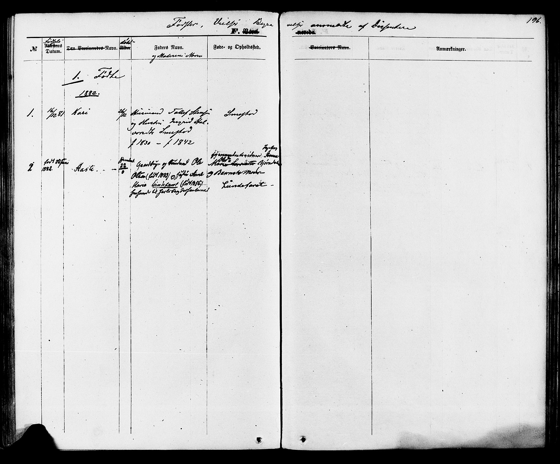 SAKO, Lunde kirkebøker, F/Fa/L0001: Ministerialbok nr. I 1, 1866-1883, s. 196