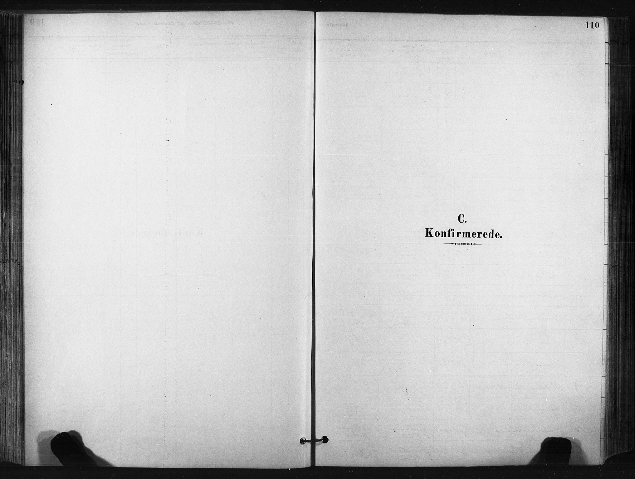 SAKO, Bø kirkebøker, F/Fa/L0010: Ministerialbok nr. 10, 1880-1892, s. 110
