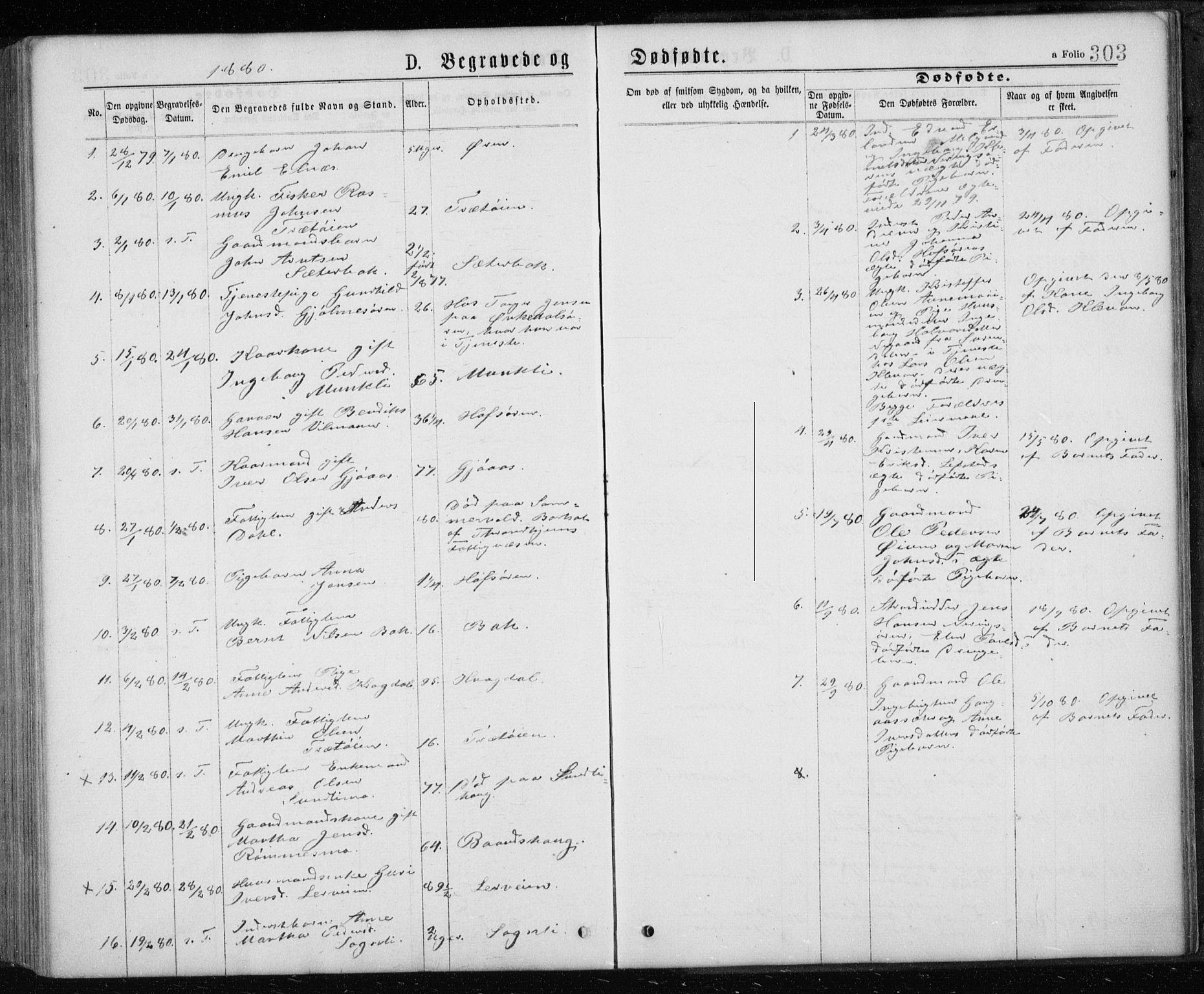 SAT, Ministerialprotokoller, klokkerbøker og fødselsregistre - Sør-Trøndelag, 668/L0817: Klokkerbok nr. 668C06, 1873-1884, s. 303