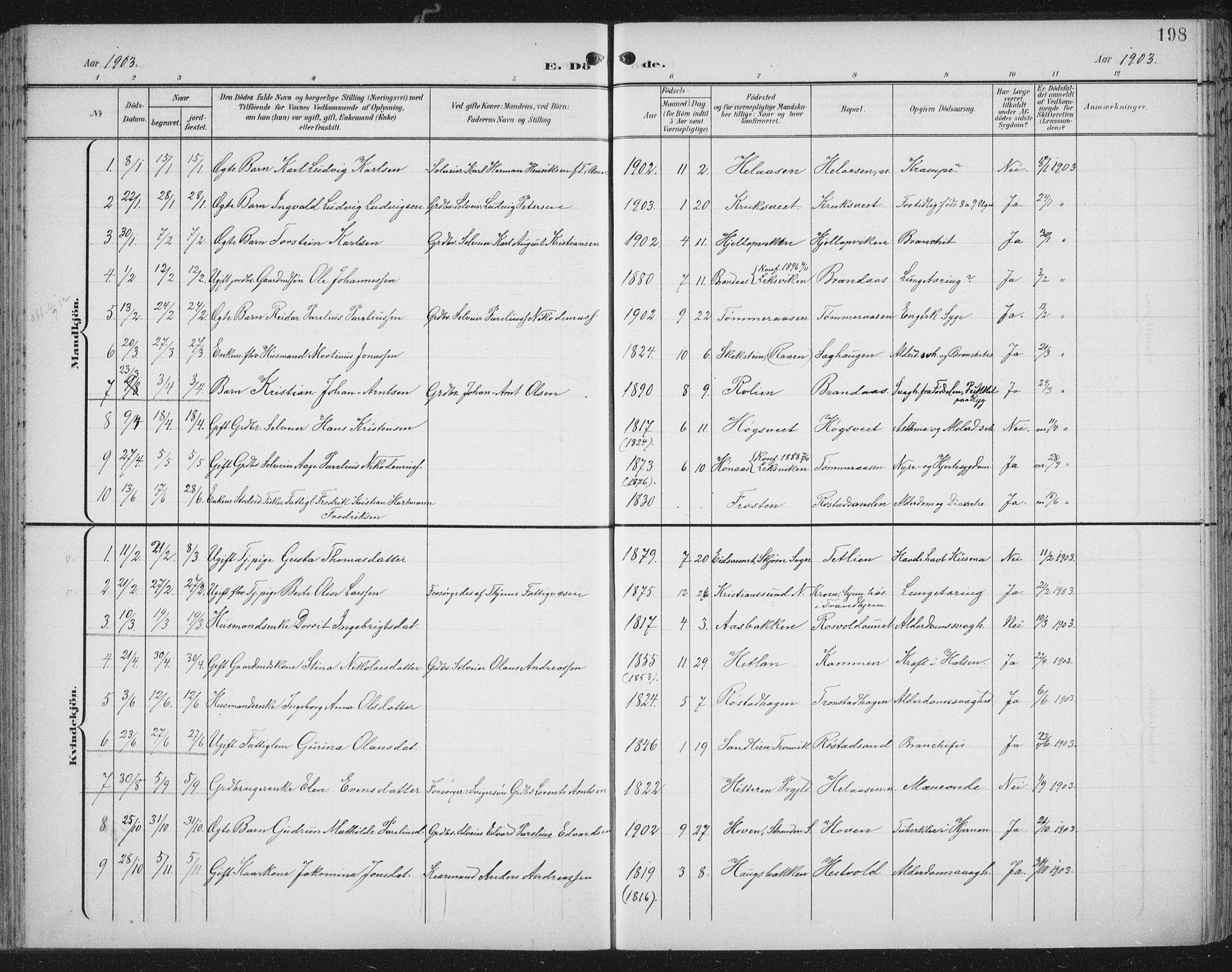 SAT, Ministerialprotokoller, klokkerbøker og fødselsregistre - Nord-Trøndelag, 701/L0011: Ministerialbok nr. 701A11, 1899-1915, s. 198
