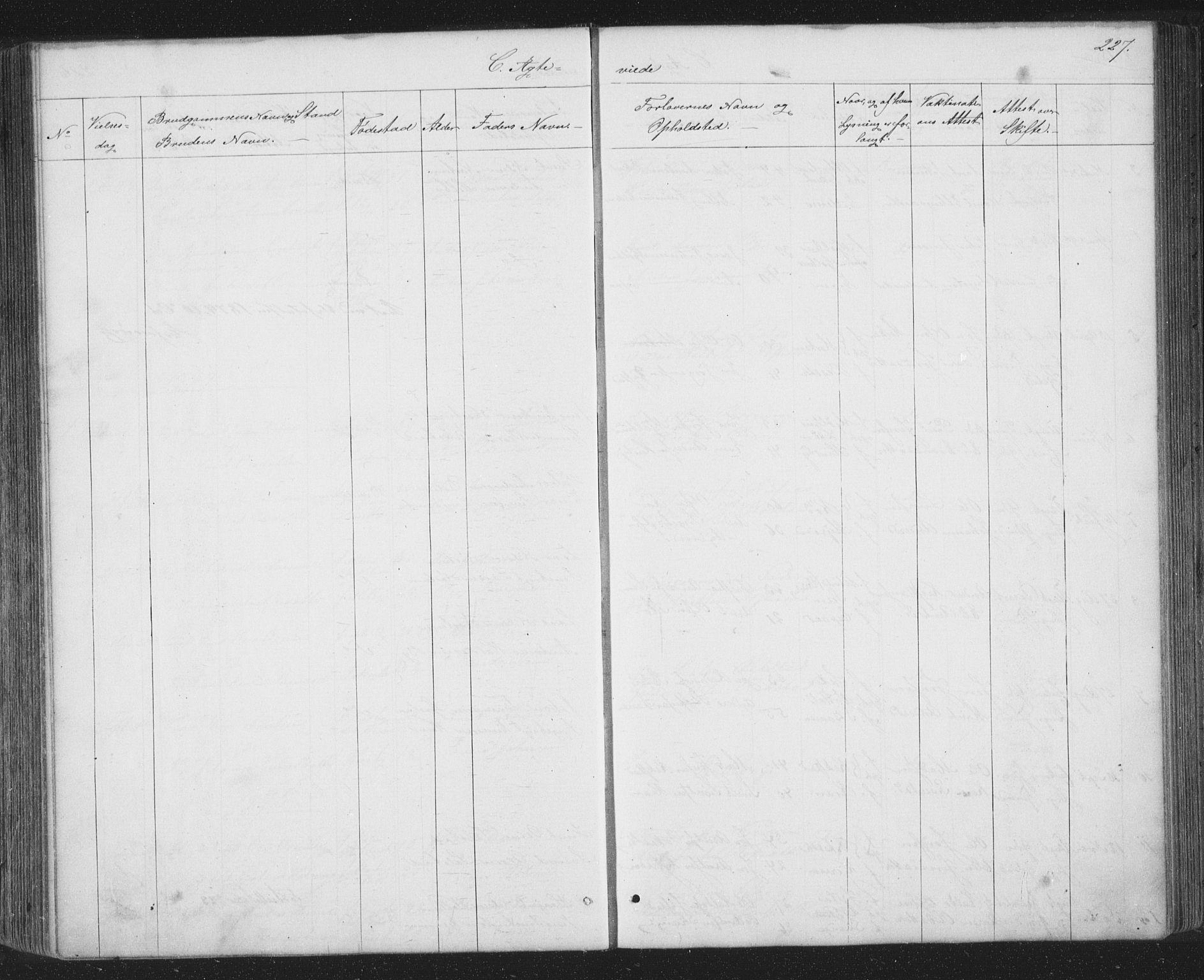 SAT, Ministerialprotokoller, klokkerbøker og fødselsregistre - Sør-Trøndelag, 667/L0798: Klokkerbok nr. 667C03, 1867-1929, s. 227
