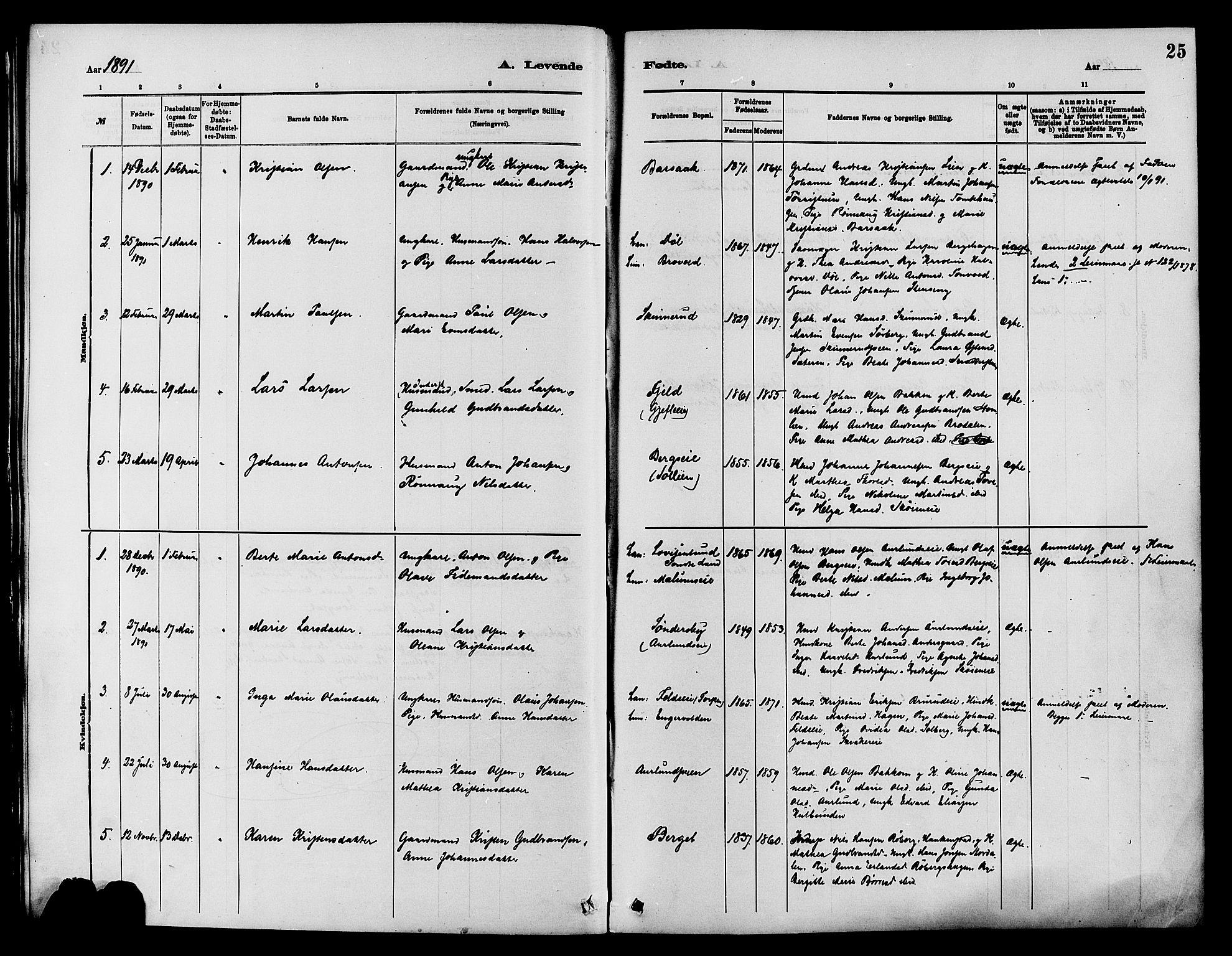 SAH, Nordre Land prestekontor, Ministerialbok nr. 3, 1882-1896, s. 25