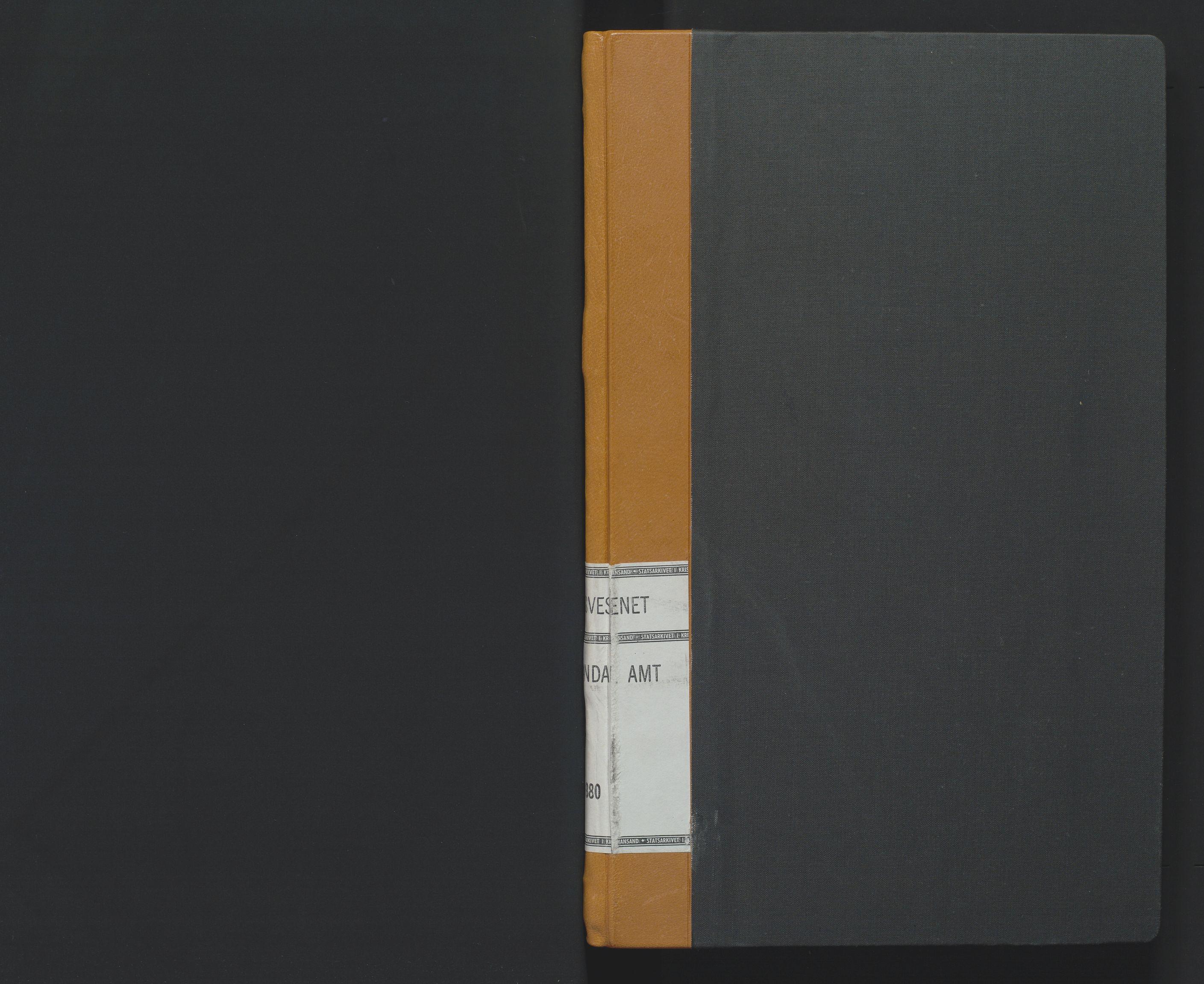 SAK, Utskiftningsformannen i Lister og Mandal amt, F/Fa/Faa/L0005: Utskiftningsprotokoll med register nr 5, 1863-1880