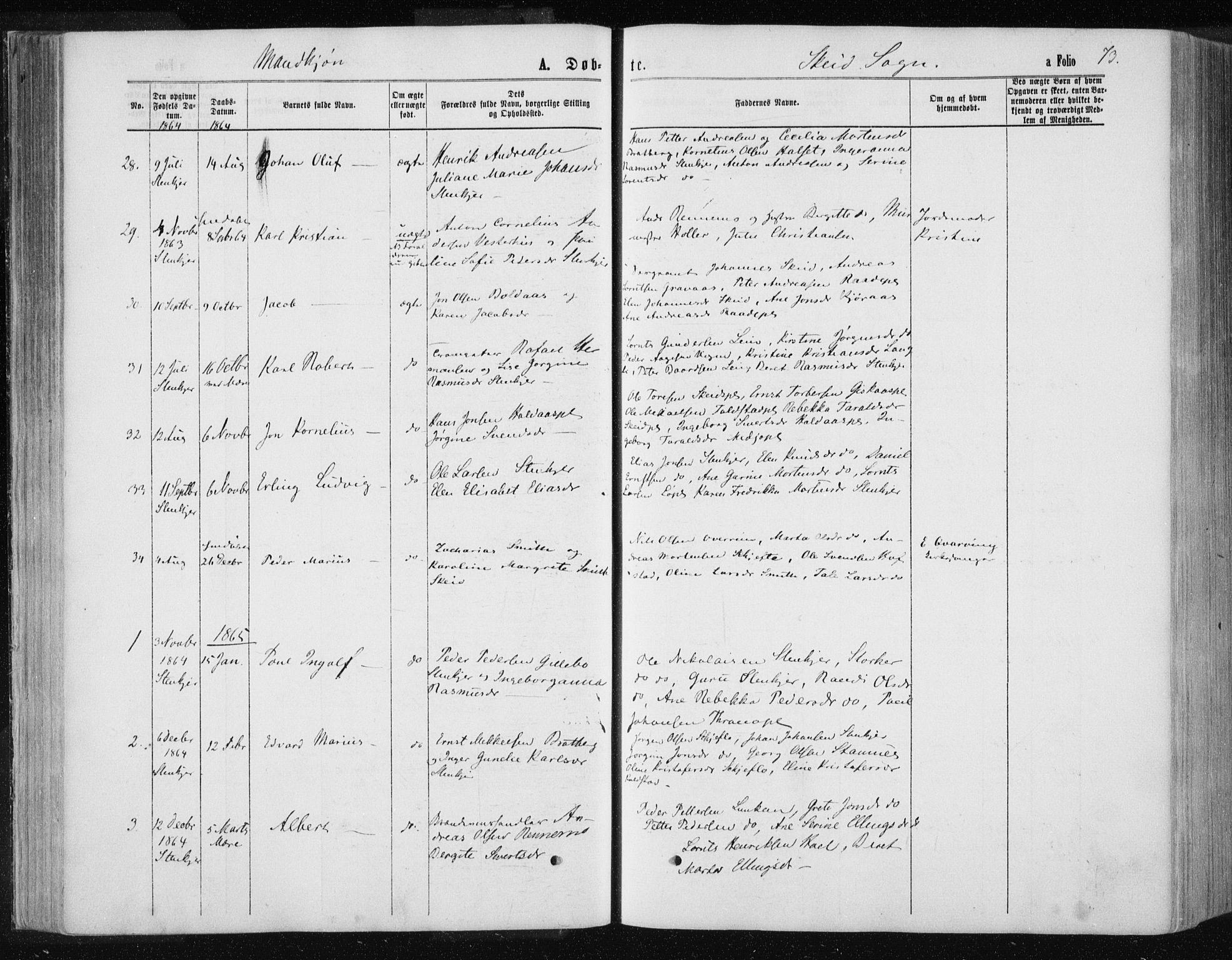 SAT, Ministerialprotokoller, klokkerbøker og fødselsregistre - Nord-Trøndelag, 735/L0345: Ministerialbok nr. 735A08 /2, 1863-1872, s. 73