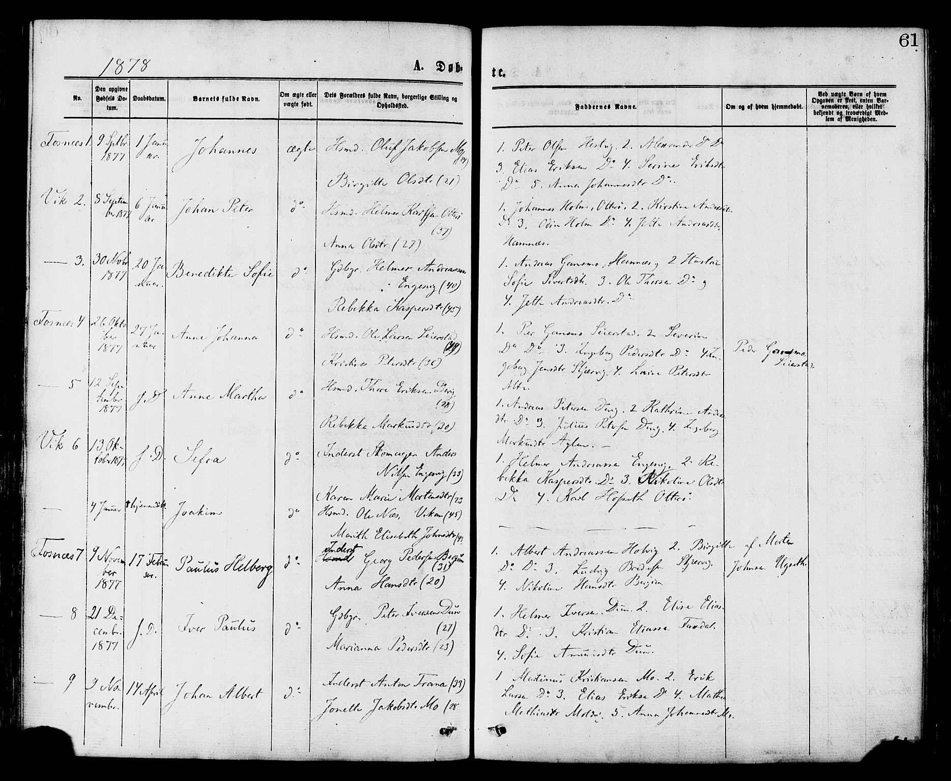 SAT, Ministerialprotokoller, klokkerbøker og fødselsregistre - Nord-Trøndelag, 773/L0616: Ministerialbok nr. 773A07, 1870-1887, s. 61