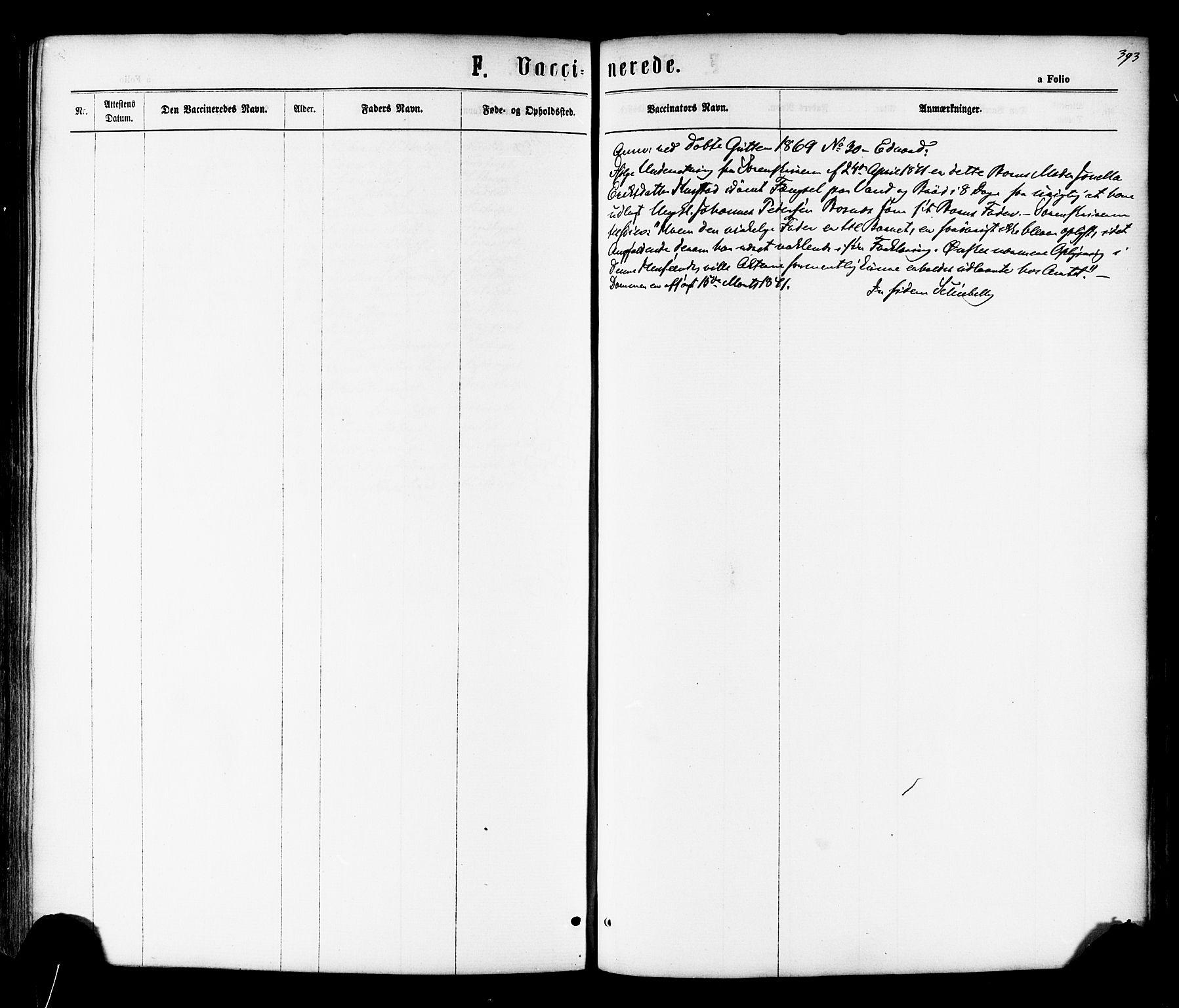 SAT, Ministerialprotokoller, klokkerbøker og fødselsregistre - Nord-Trøndelag, 730/L0284: Ministerialbok nr. 730A09, 1866-1878, s. 393
