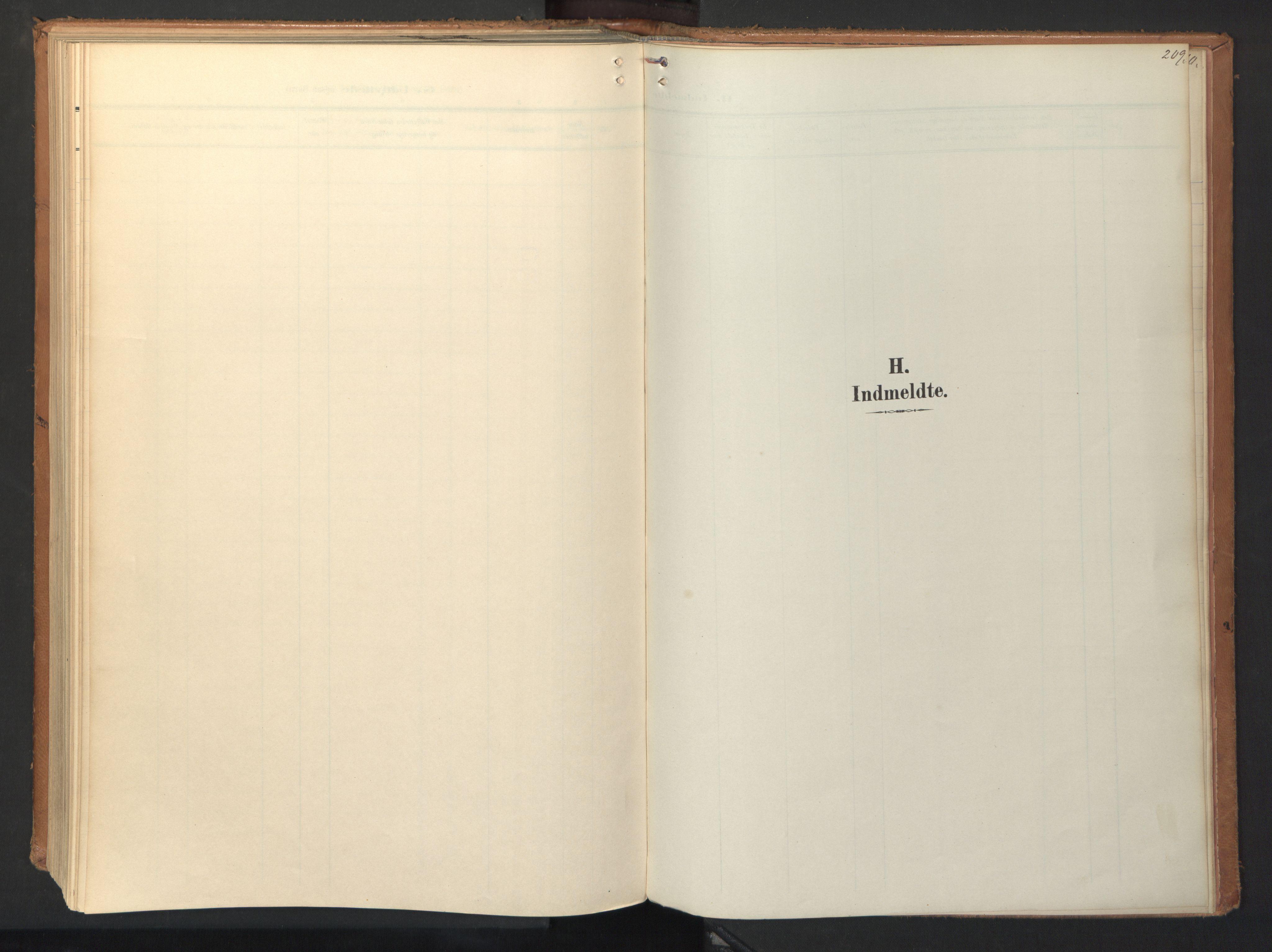 SAT, Ministerialprotokoller, klokkerbøker og fødselsregistre - Sør-Trøndelag, 694/L1128: Ministerialbok nr. 694A02, 1906-1931, s. 209