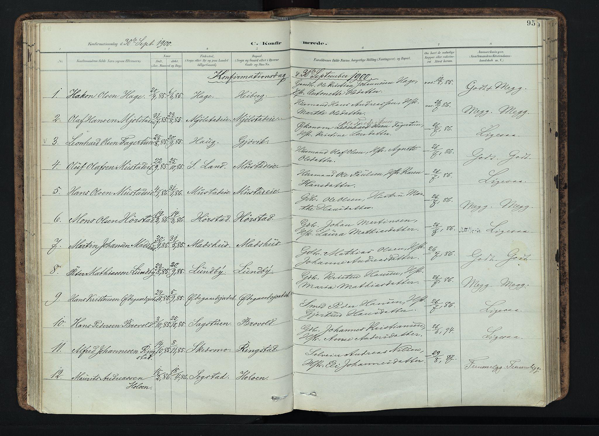 SAH, Vardal prestekontor, H/Ha/Haa/L0019: Ministerialbok nr. 19, 1893-1907, s. 95