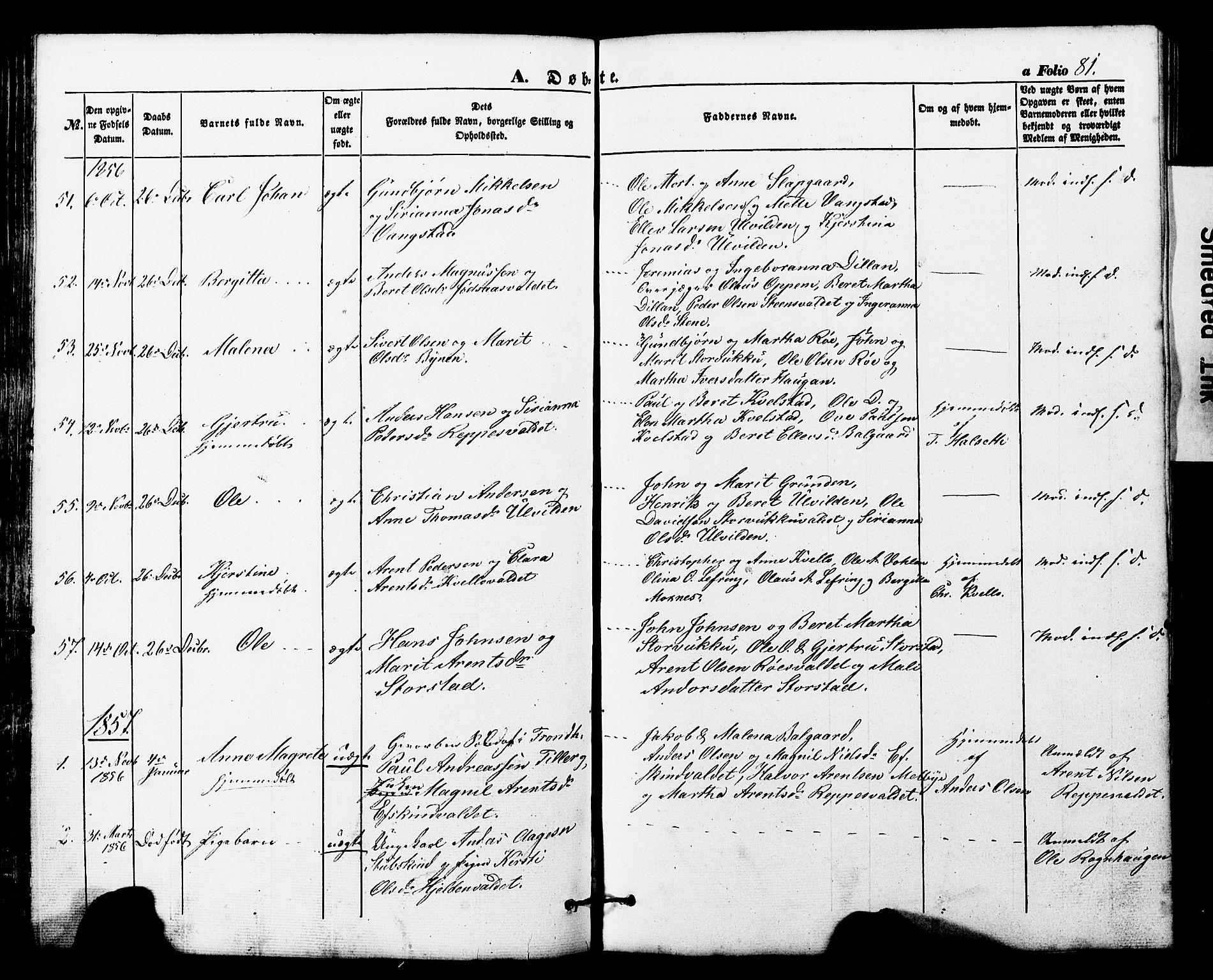 SAT, Ministerialprotokoller, klokkerbøker og fødselsregistre - Nord-Trøndelag, 724/L0268: Klokkerbok nr. 724C04, 1846-1878, s. 81