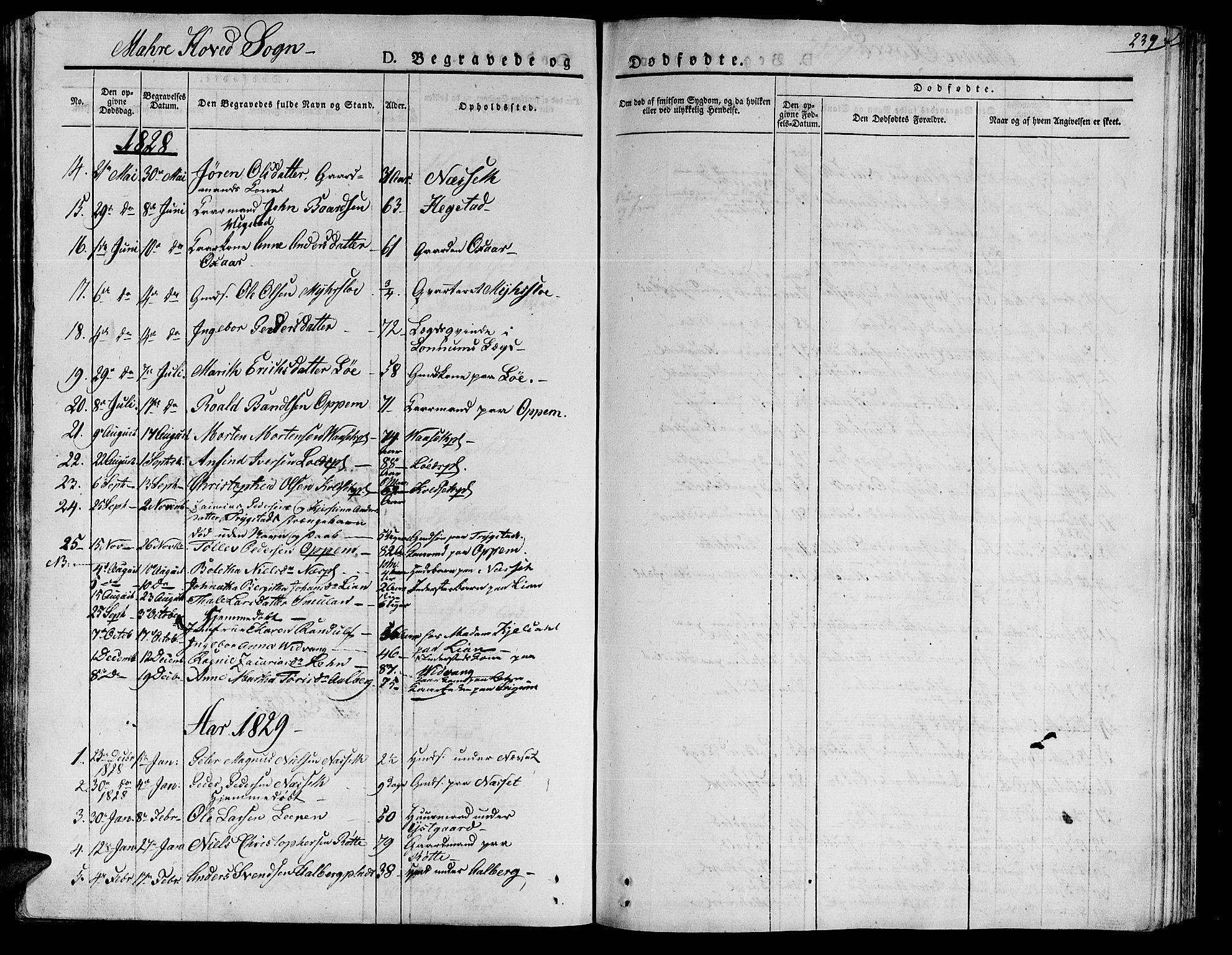 SAT, Ministerialprotokoller, klokkerbøker og fødselsregistre - Nord-Trøndelag, 735/L0336: Ministerialbok nr. 735A05 /1, 1825-1835, s. 239