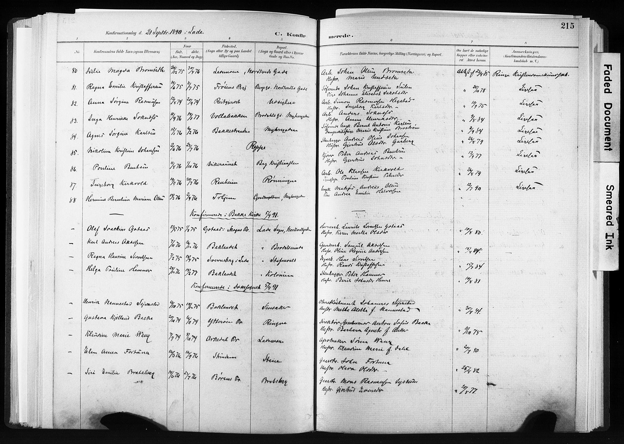 SAT, Ministerialprotokoller, klokkerbøker og fødselsregistre - Sør-Trøndelag, 606/L0300: Ministerialbok nr. 606A15, 1886-1893, s. 215