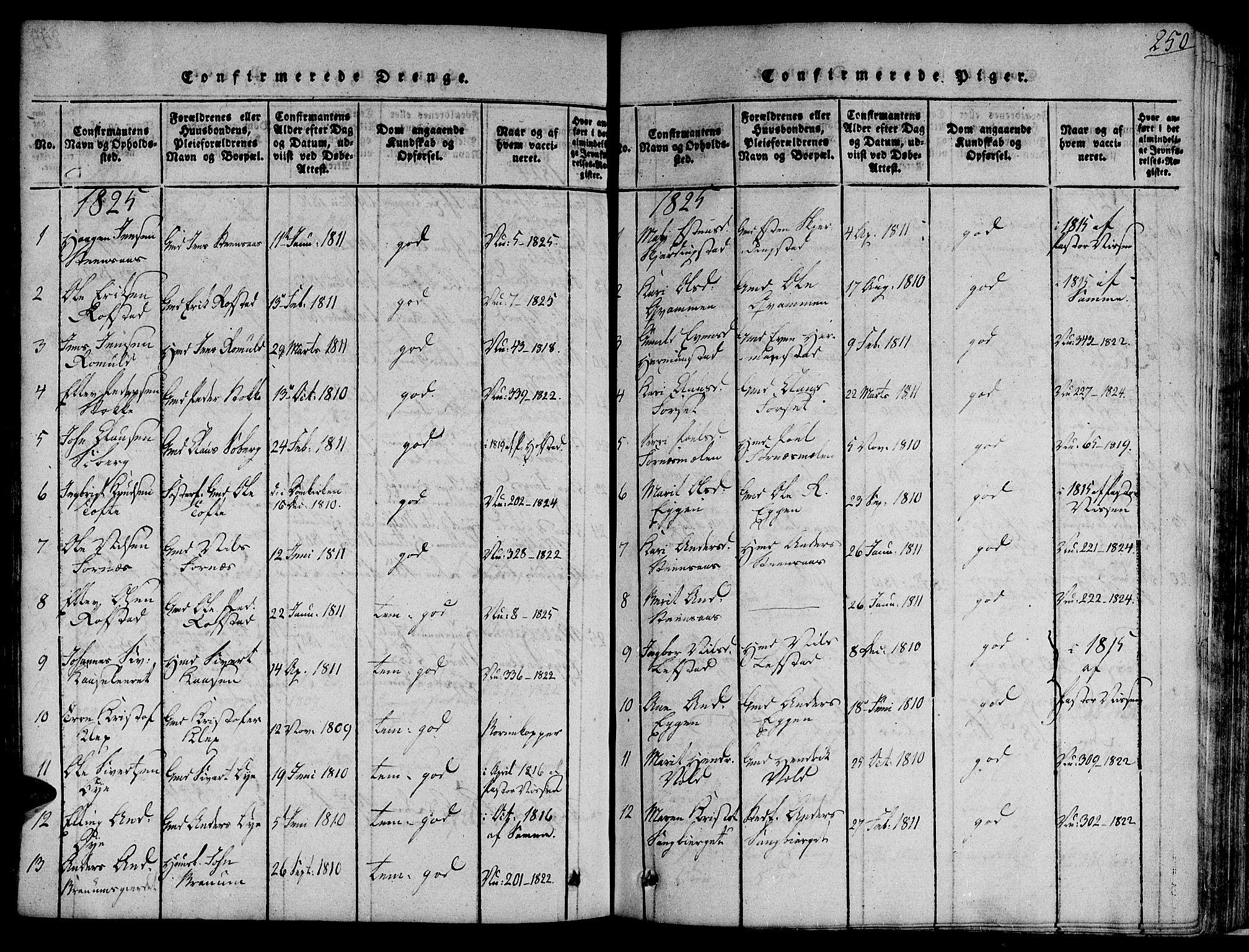 SAT, Ministerialprotokoller, klokkerbøker og fødselsregistre - Sør-Trøndelag, 691/L1065: Ministerialbok nr. 691A03 /1, 1816-1826, s. 250