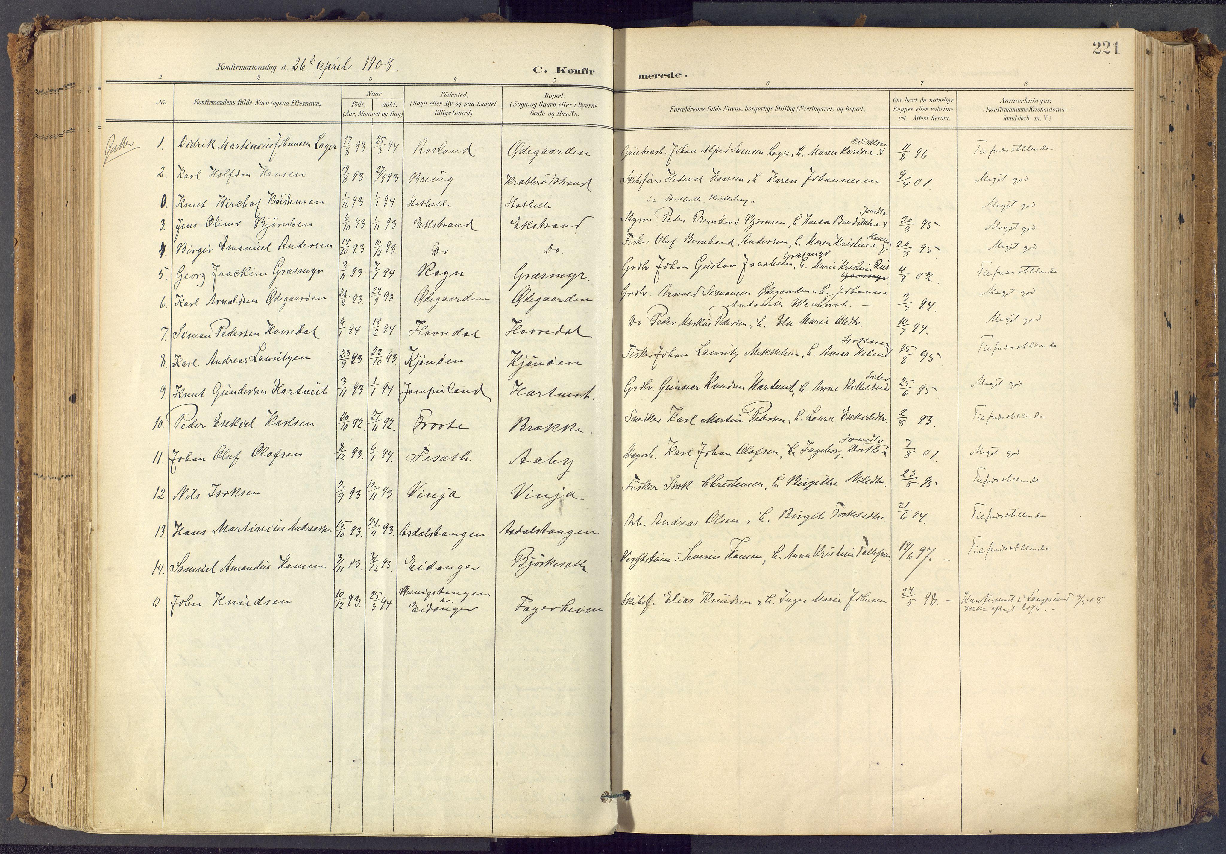 SAKO, Bamble kirkebøker, F/Fa/L0009: Ministerialbok nr. I 9, 1901-1917, s. 221