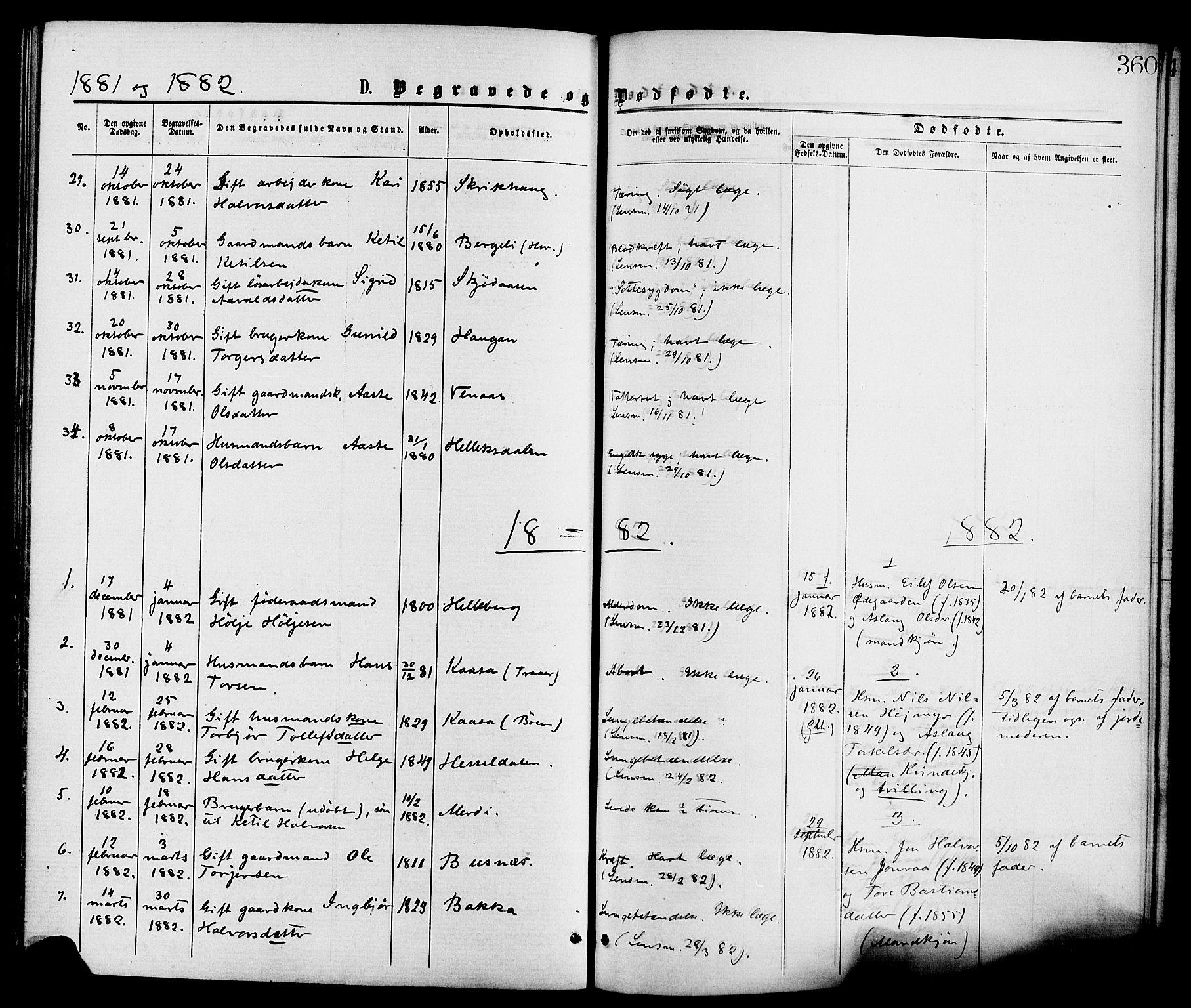 SAKO, Gransherad kirkebøker, F/Fa/L0004: Ministerialbok nr. I 4, 1871-1886, s. 360