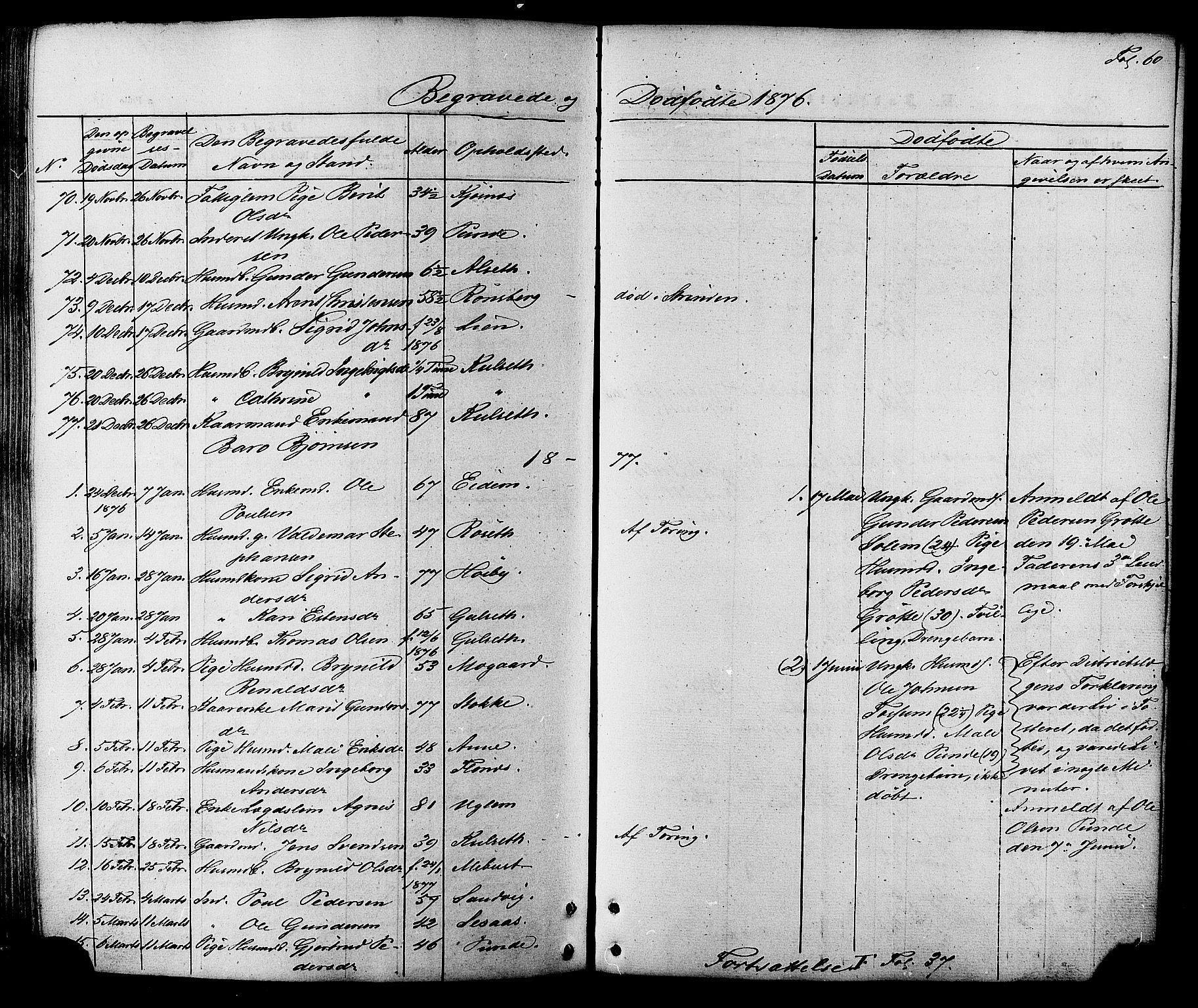 SAT, Ministerialprotokoller, klokkerbøker og fødselsregistre - Sør-Trøndelag, 695/L1147: Ministerialbok nr. 695A07, 1860-1877, s. 60