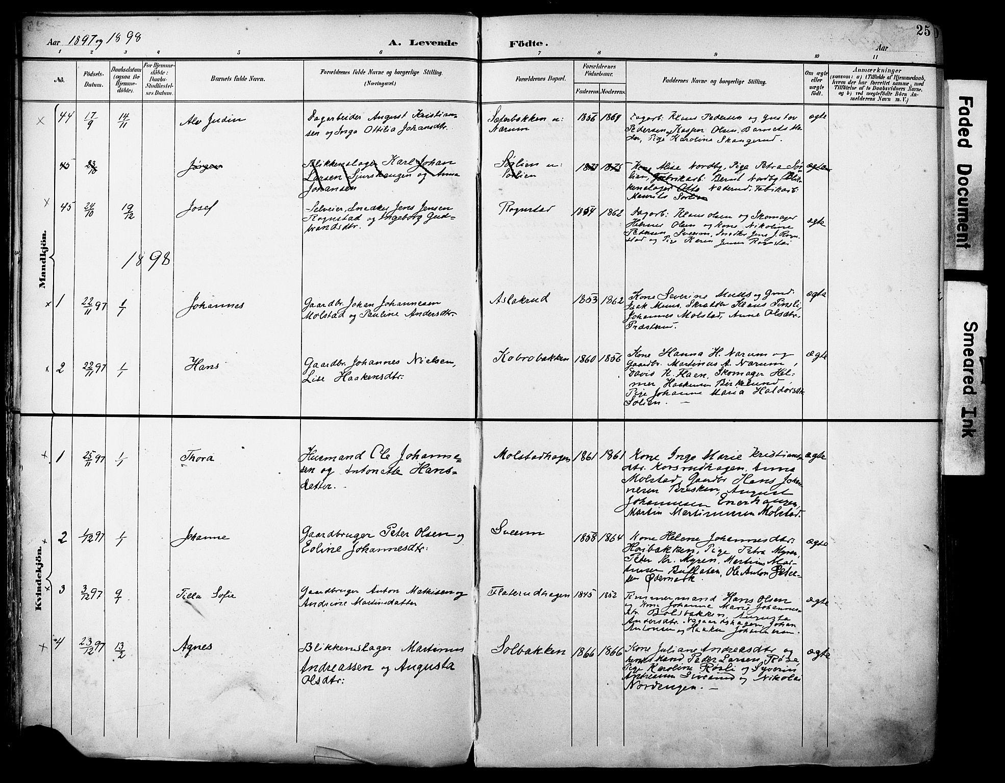 SAH, Vestre Toten prestekontor, H/Ha/Haa/L0013: Ministerialbok nr. 13, 1895-1911, s. 25