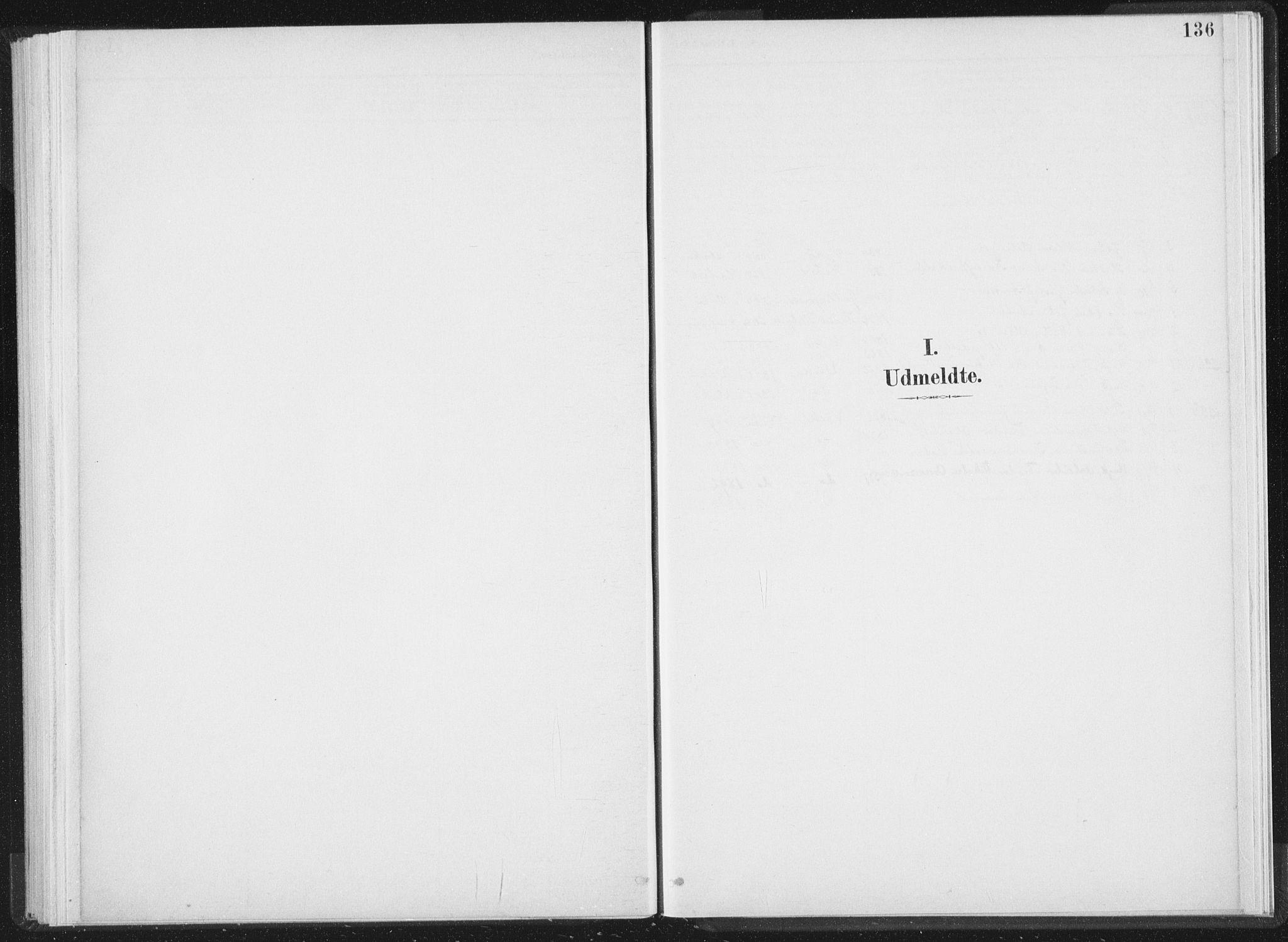 SAT, Ministerialprotokoller, klokkerbøker og fødselsregistre - Nord-Trøndelag, 724/L0263: Ministerialbok nr. 724A01, 1891-1907, s. 136