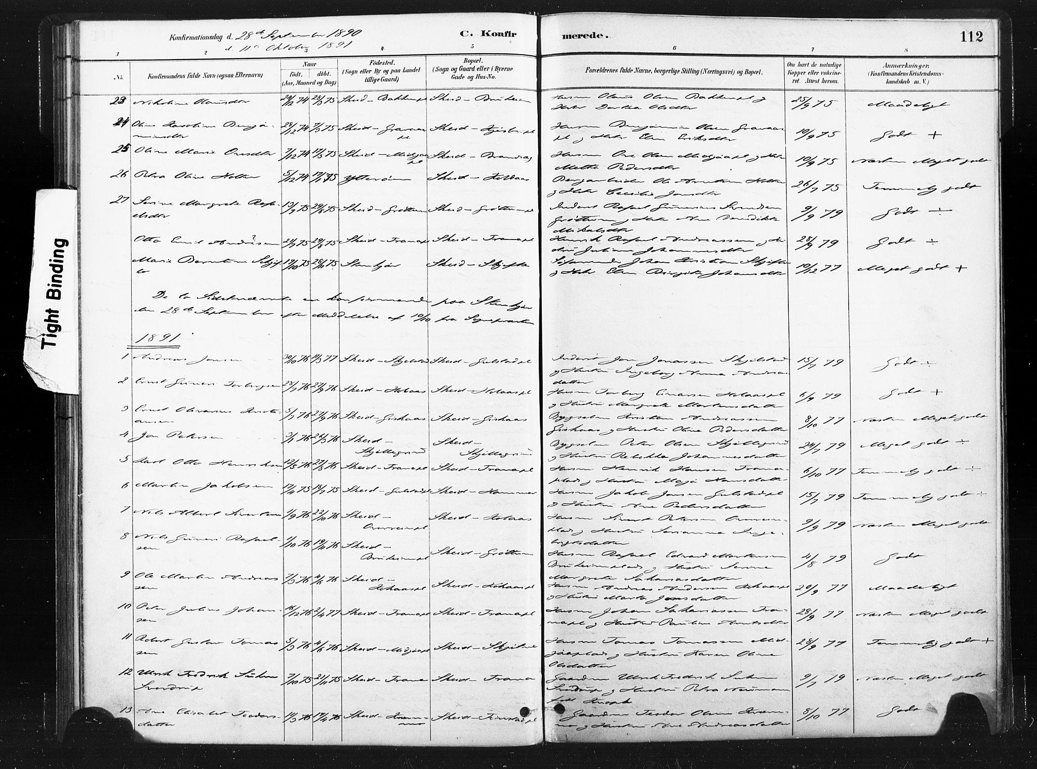 SAT, Ministerialprotokoller, klokkerbøker og fødselsregistre - Nord-Trøndelag, 736/L0361: Ministerialbok nr. 736A01, 1884-1906, s. 112