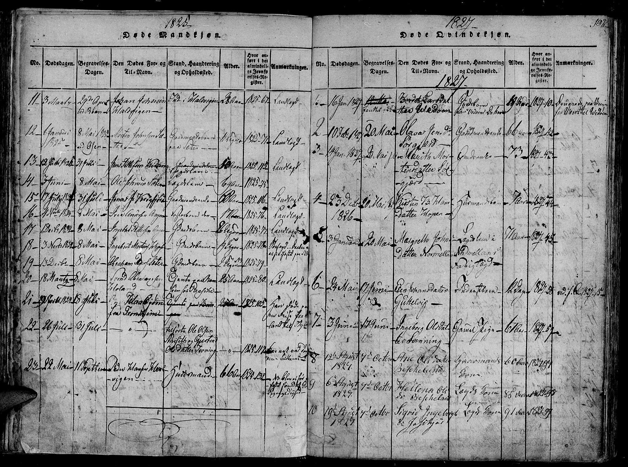 SAT, Ministerialprotokoller, klokkerbøker og fødselsregistre - Sør-Trøndelag, 657/L0702: Ministerialbok nr. 657A03, 1818-1831, s. 102