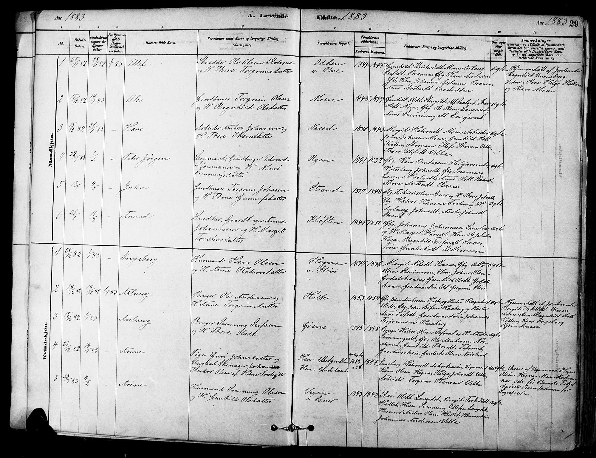 SAKO, Heddal kirkebøker, F/Fa/L0008: Ministerialbok nr. I 8, 1878-1903, s. 29