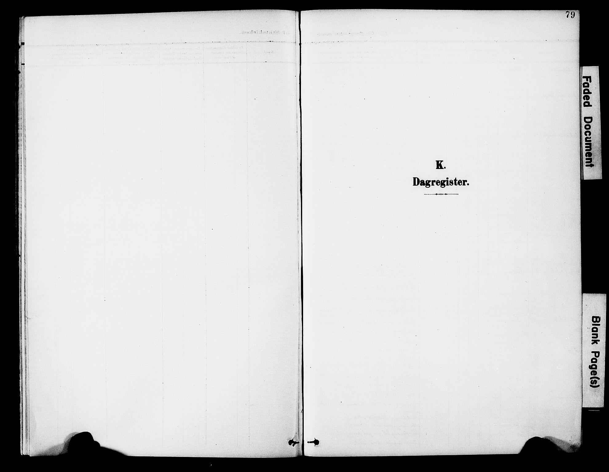 SAT, Ministerialprotokoller, klokkerbøker og fødselsregistre - Nord-Trøndelag, 746/L0452: Ministerialbok nr. 746A09, 1900-1908, s. 79