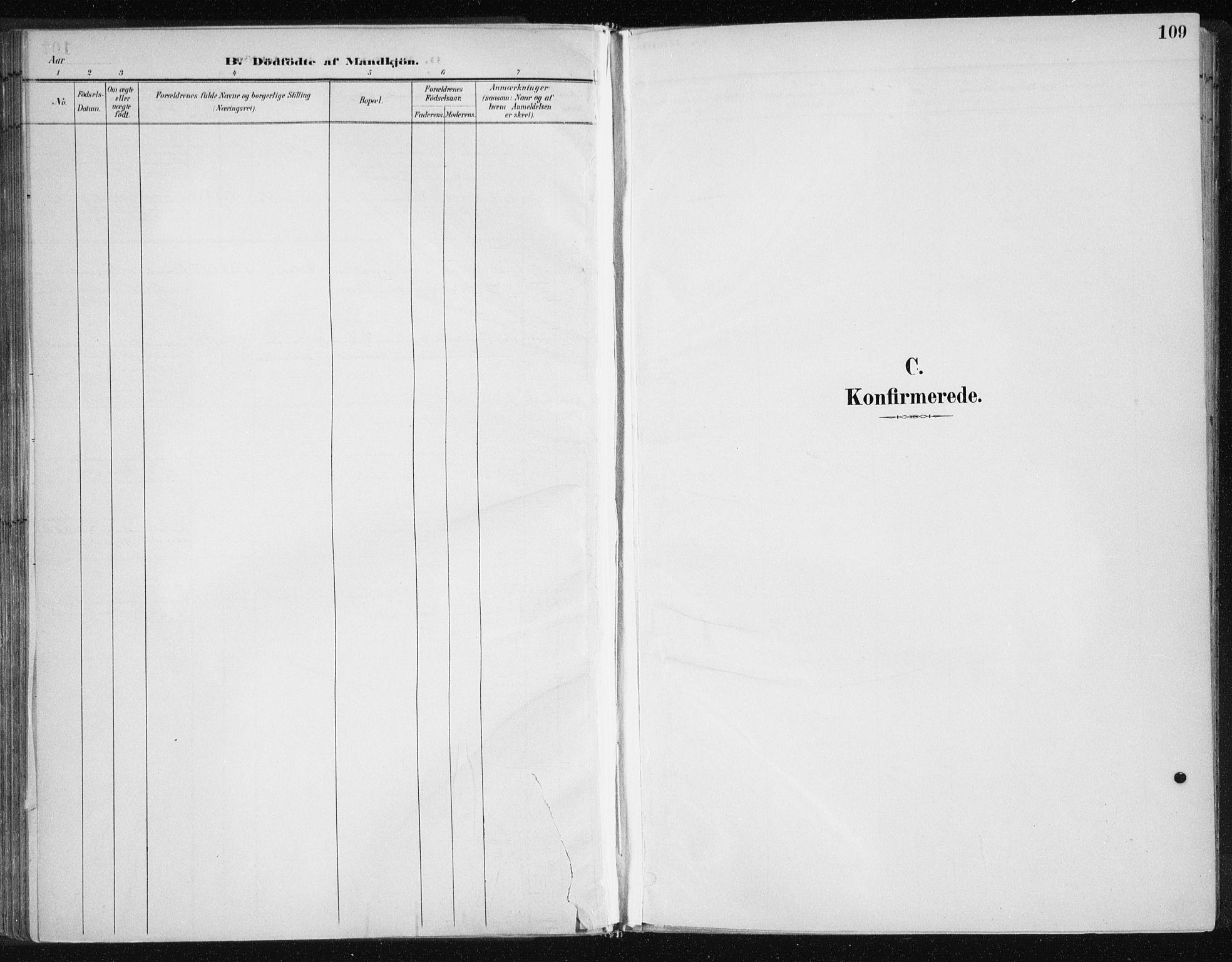 SAT, Ministerialprotokoller, klokkerbøker og fødselsregistre - Nord-Trøndelag, 701/L0010: Ministerialbok nr. 701A10, 1883-1899, s. 109