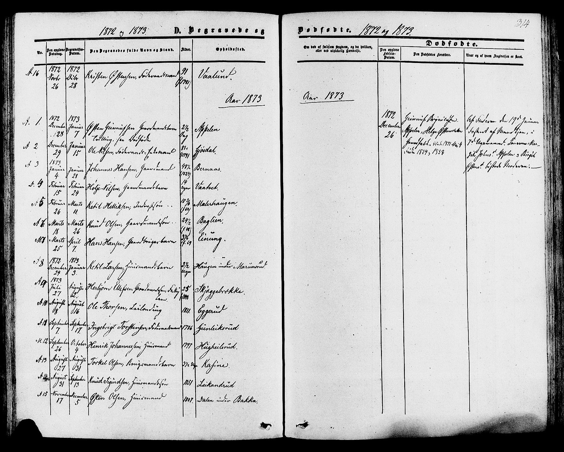 SAKO, Tinn kirkebøker, F/Fa/L0006: Ministerialbok nr. I 6, 1857-1878, s. 314
