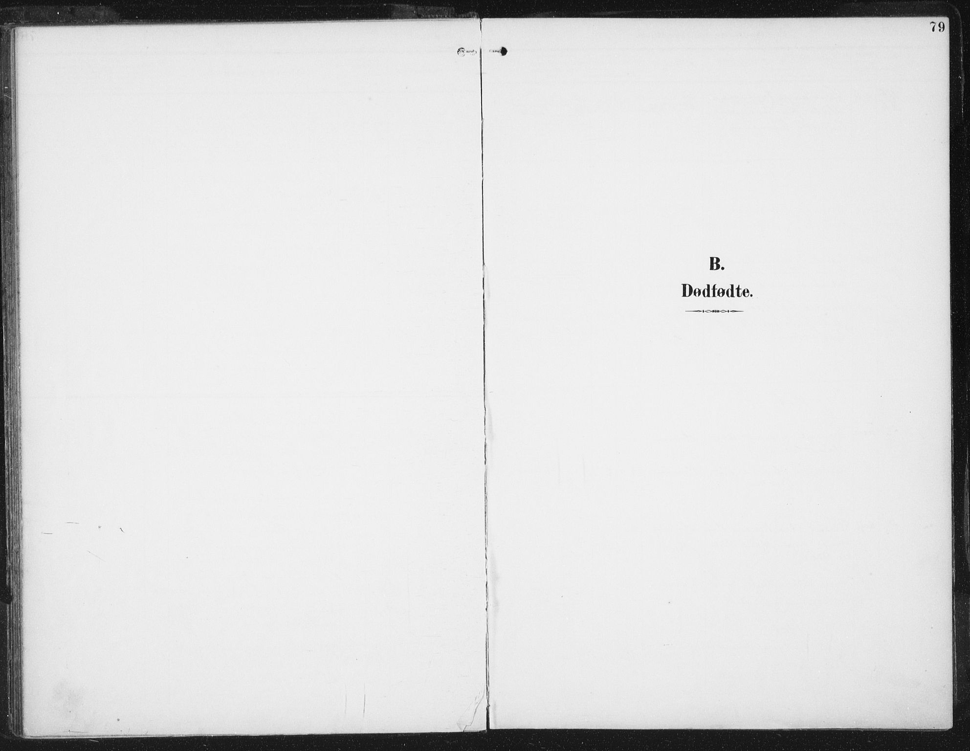 SAT, Ministerialprotokoller, klokkerbøker og fødselsregistre - Sør-Trøndelag, 674/L0872: Ministerialbok nr. 674A04, 1897-1907, s. 79
