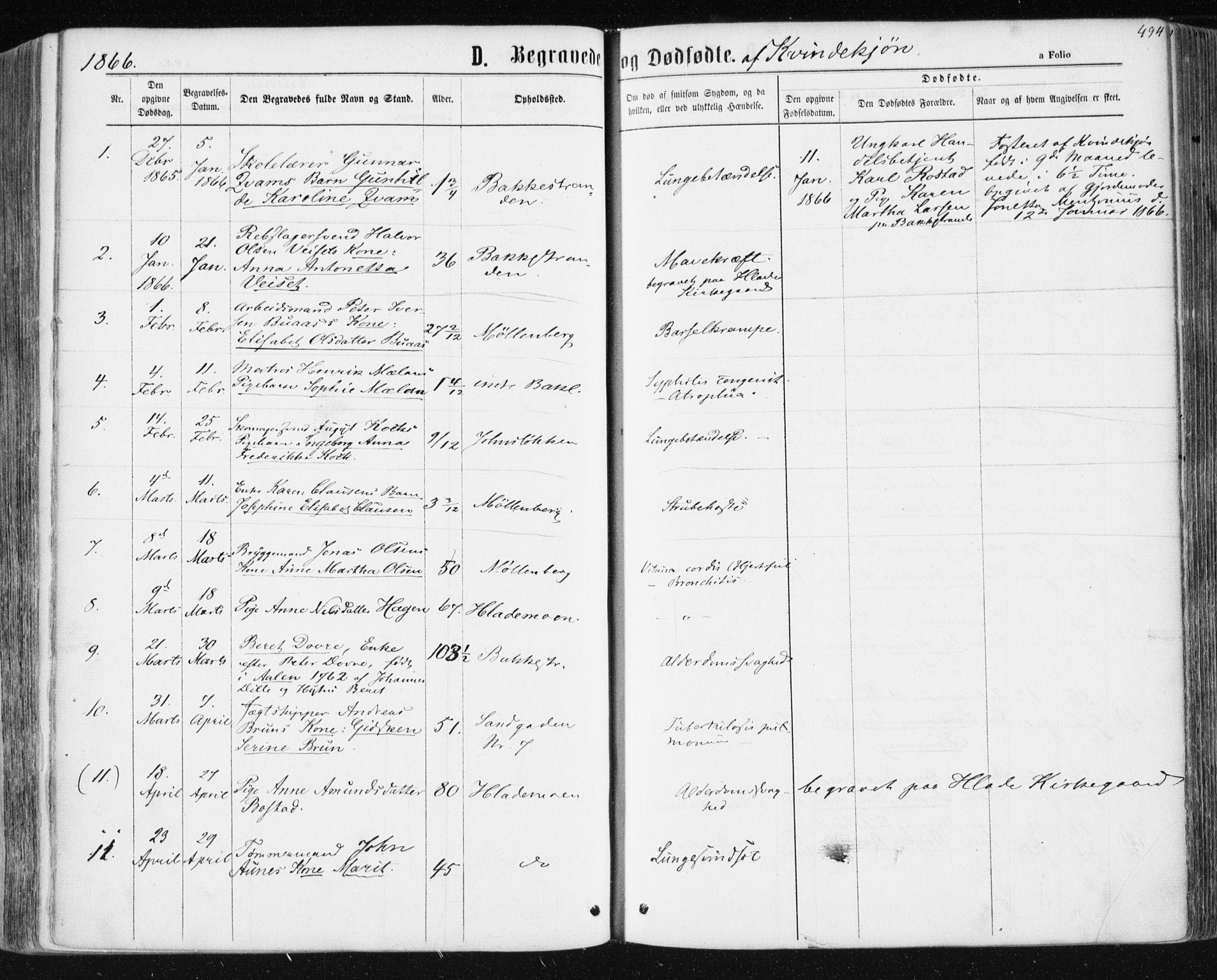 SAT, Ministerialprotokoller, klokkerbøker og fødselsregistre - Sør-Trøndelag, 604/L0186: Ministerialbok nr. 604A07, 1866-1877, s. 494