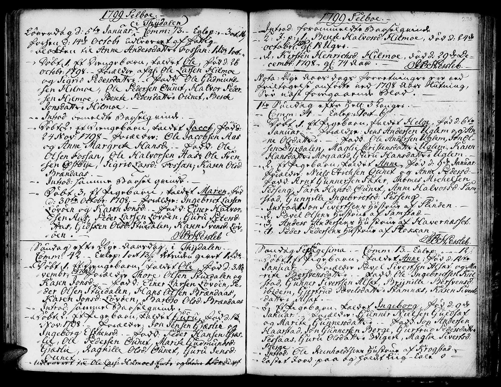 SAT, Ministerialprotokoller, klokkerbøker og fødselsregistre - Sør-Trøndelag, 695/L1138: Ministerialbok nr. 695A02 /1, 1757-1801, s. 230