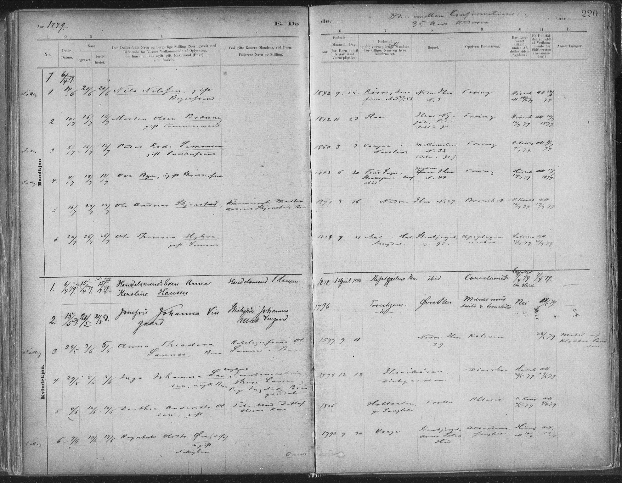 SAT, Ministerialprotokoller, klokkerbøker og fødselsregistre - Sør-Trøndelag, 603/L0162: Ministerialbok nr. 603A01, 1879-1895, s. 220