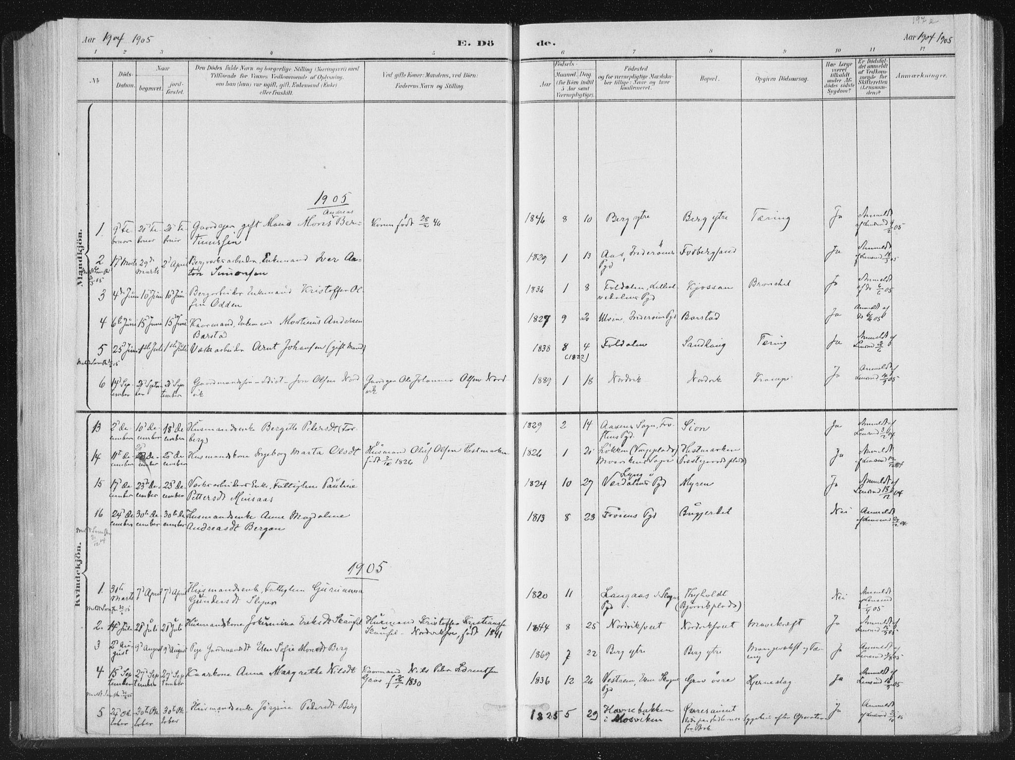 SAT, Ministerialprotokoller, klokkerbøker og fødselsregistre - Nord-Trøndelag, 722/L0220: Ministerialbok nr. 722A07, 1881-1908, s. 197e
