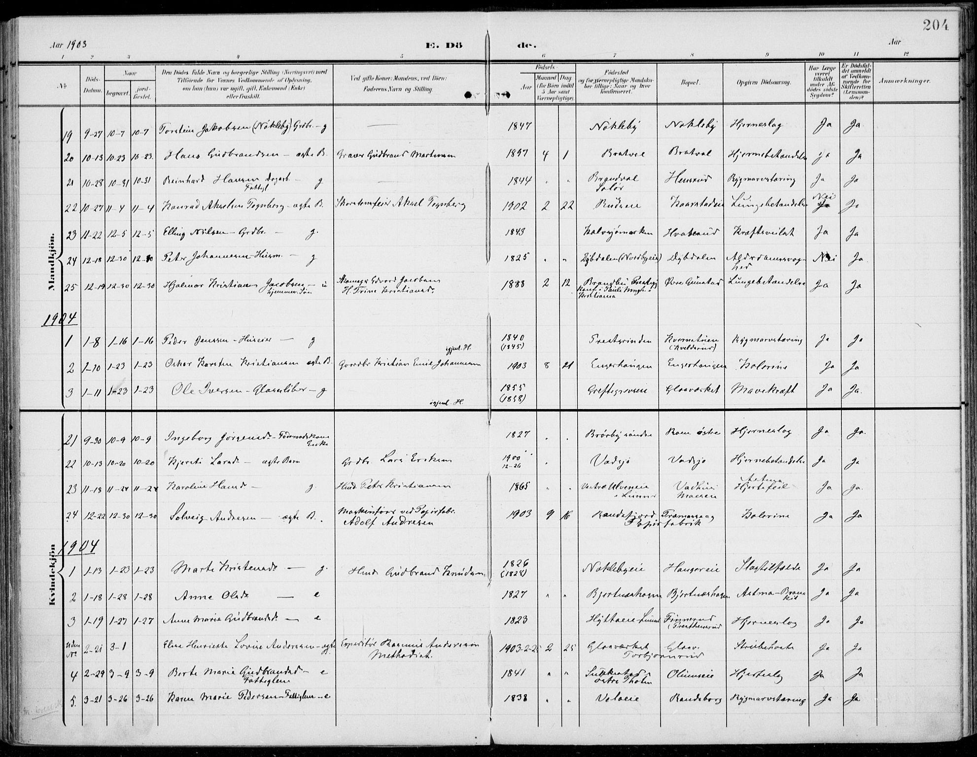 SAH, Jevnaker prestekontor, Ministerialbok nr. 11, 1902-1913, s. 204