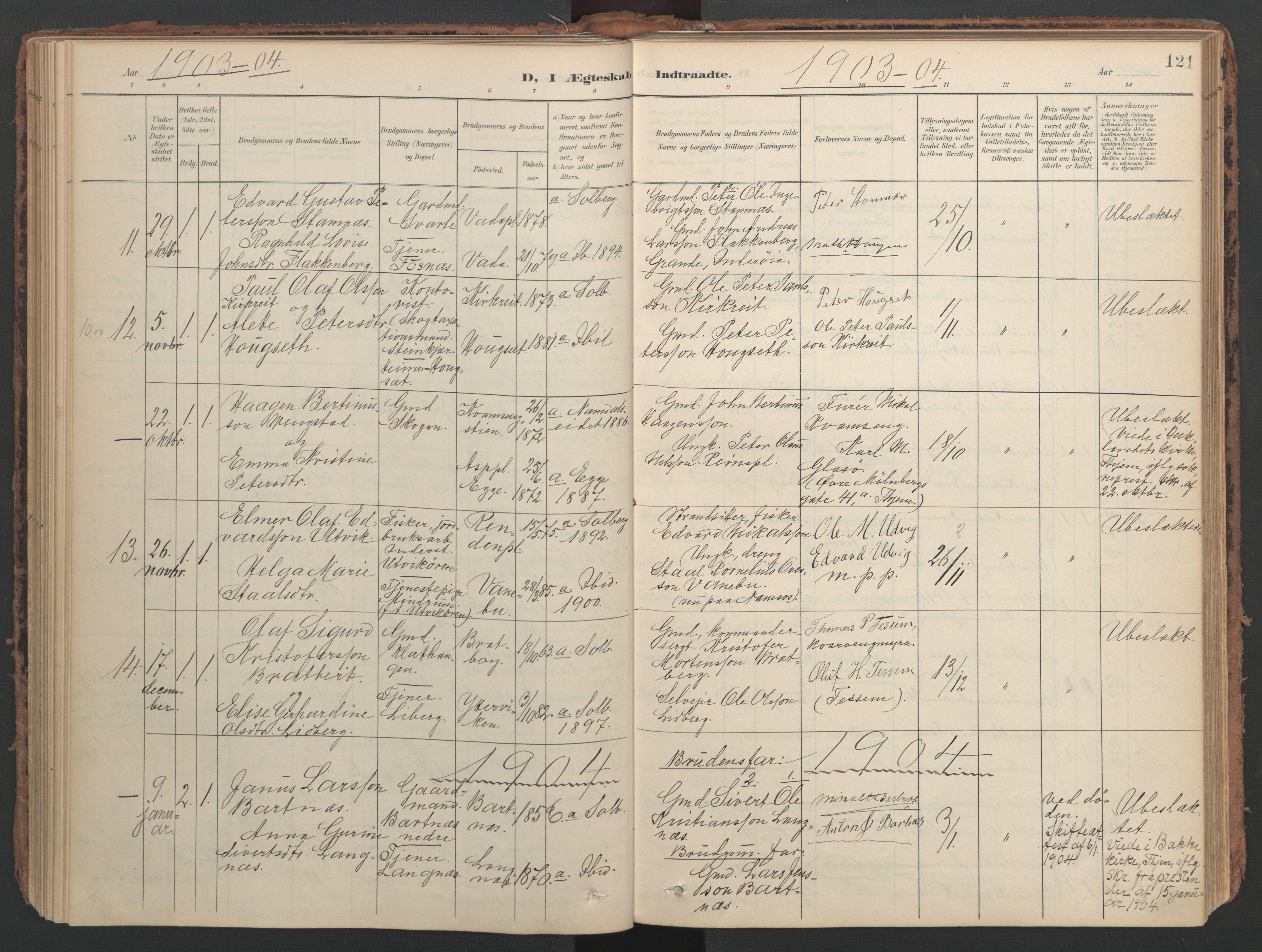SAT, Ministerialprotokoller, klokkerbøker og fødselsregistre - Nord-Trøndelag, 741/L0397: Ministerialbok nr. 741A11, 1901-1911, s. 121