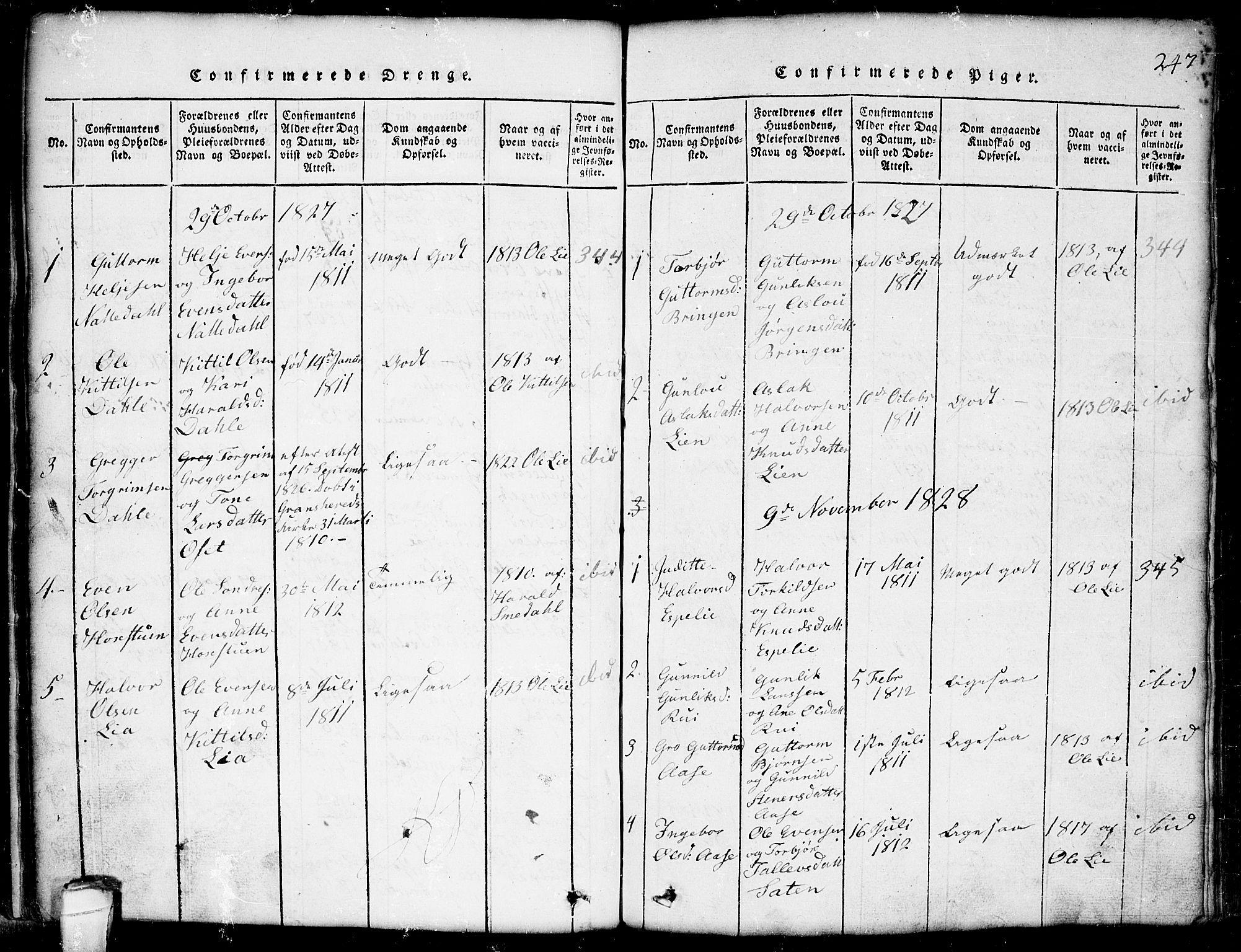 SAKO, Seljord kirkebøker, G/Gb/L0002: Klokkerbok nr. II 2, 1815-1854, s. 247