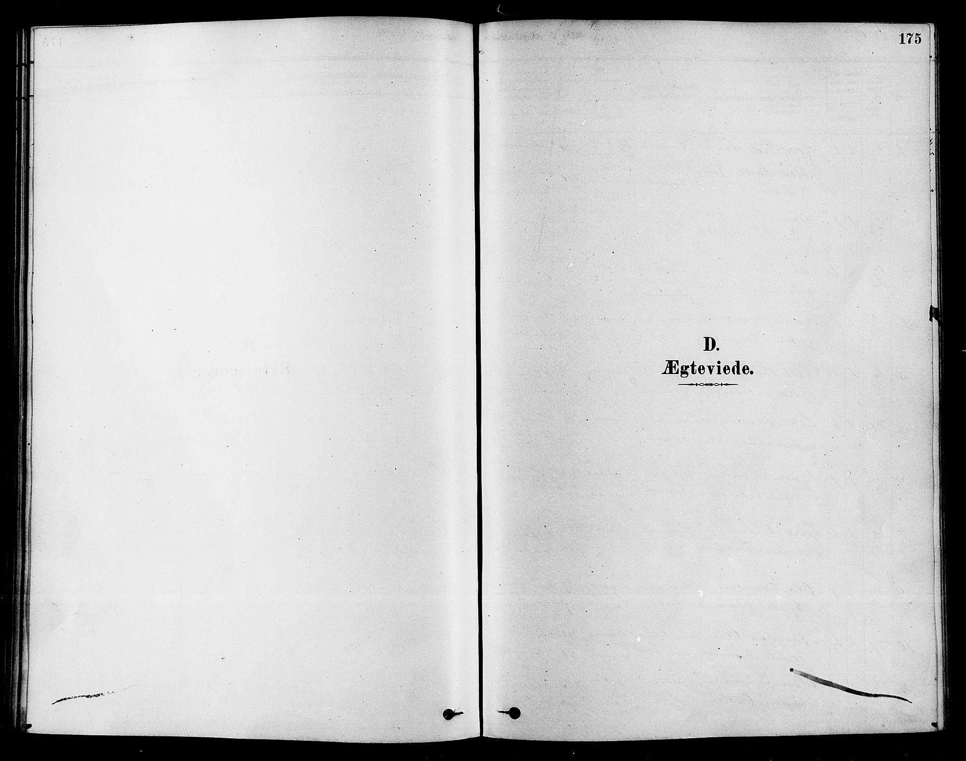 SAKO, Sigdal kirkebøker, F/Fa/L0011: Ministerialbok nr. I 11, 1879-1887, s. 175