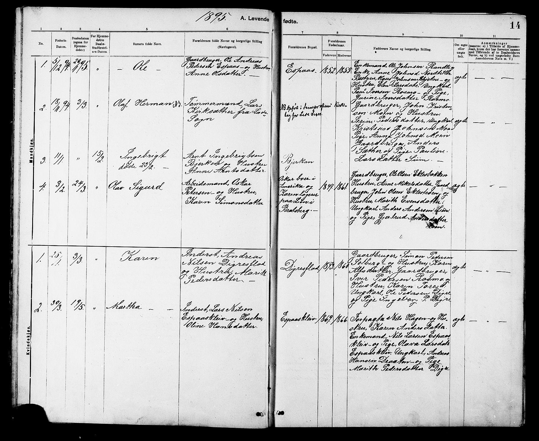 SAT, Ministerialprotokoller, klokkerbøker og fødselsregistre - Sør-Trøndelag, 608/L0341: Klokkerbok nr. 608C07, 1890-1912, s. 14