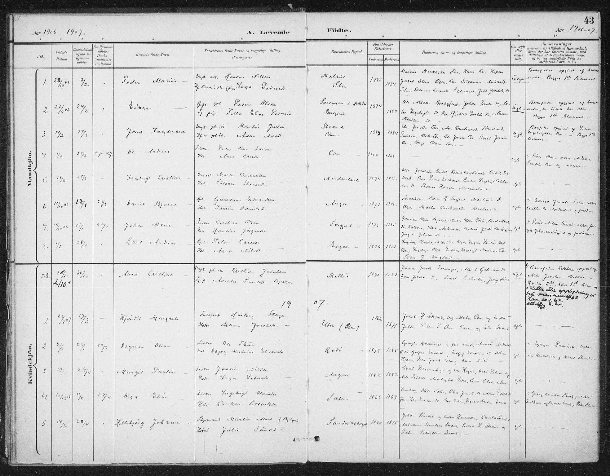 SAT, Ministerialprotokoller, klokkerbøker og fødselsregistre - Sør-Trøndelag, 658/L0723: Ministerialbok nr. 658A02, 1897-1912, s. 43
