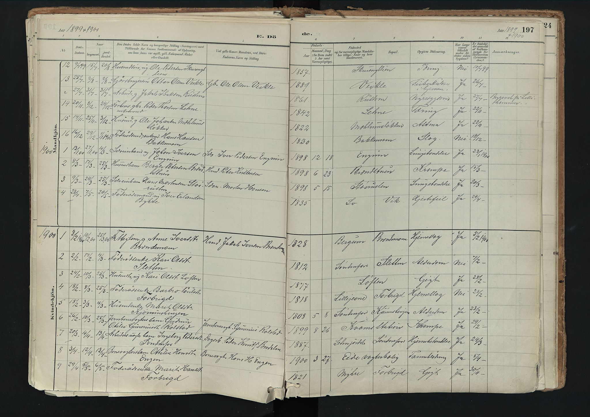 SAH, Nord-Fron prestekontor, Ministerialbok nr. 3, 1884-1914, s. 197