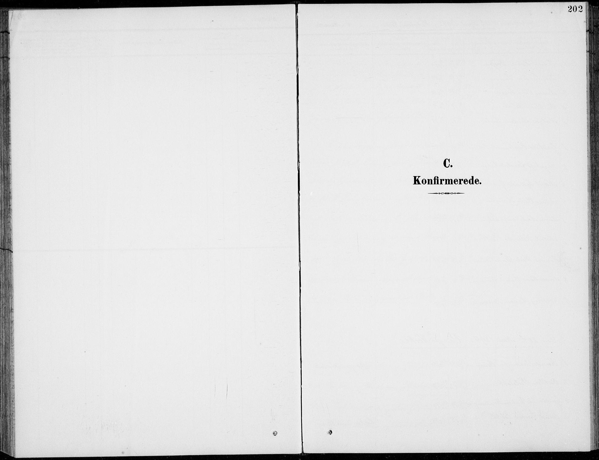 SAH, Vågå prestekontor, Klokkerbok nr. 2, 1894-1939, s. 202