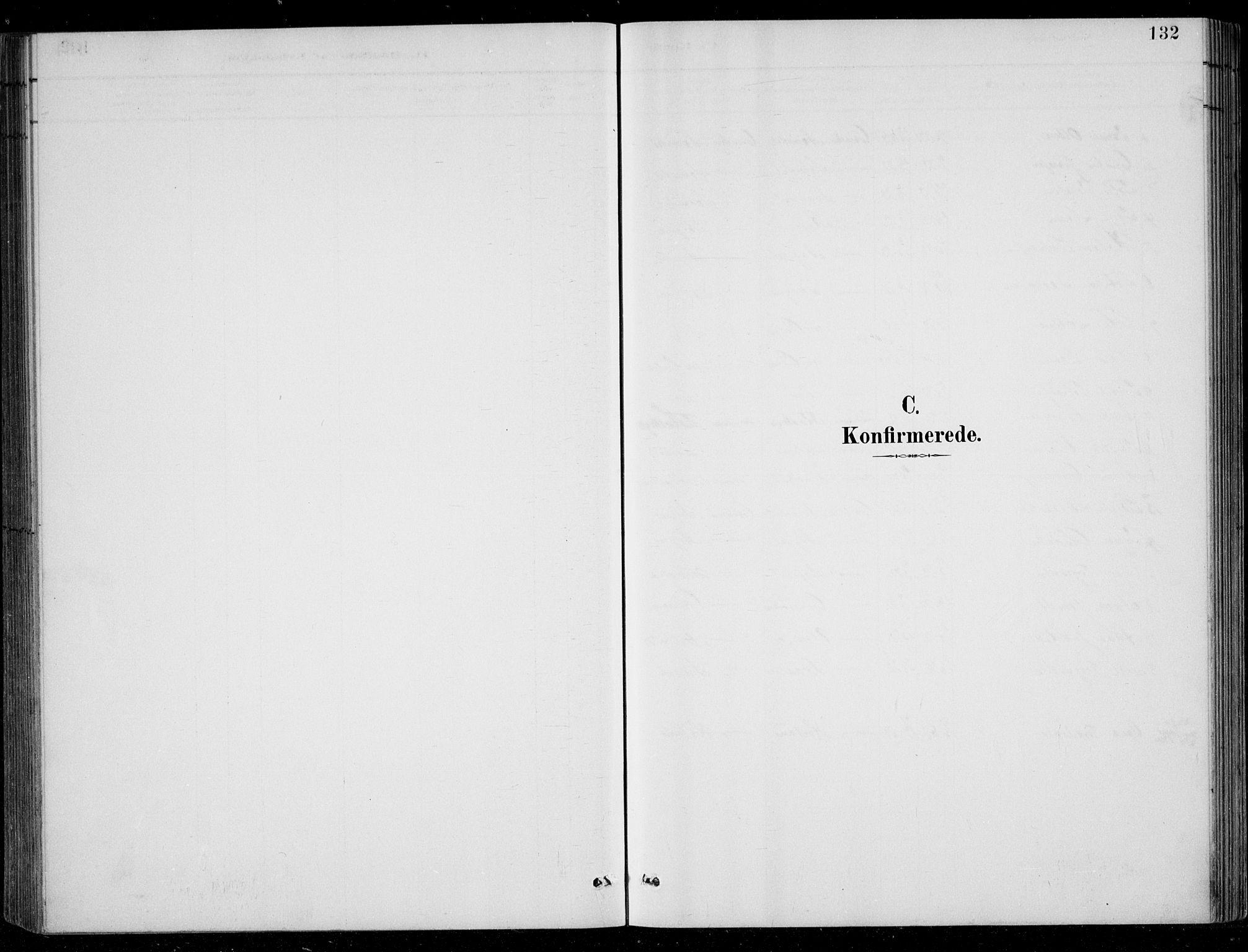 SAK, Bjelland sokneprestkontor, F/Fb/Fbc/L0003: Klokkerbok nr. B 3, 1887-1924, s. 132