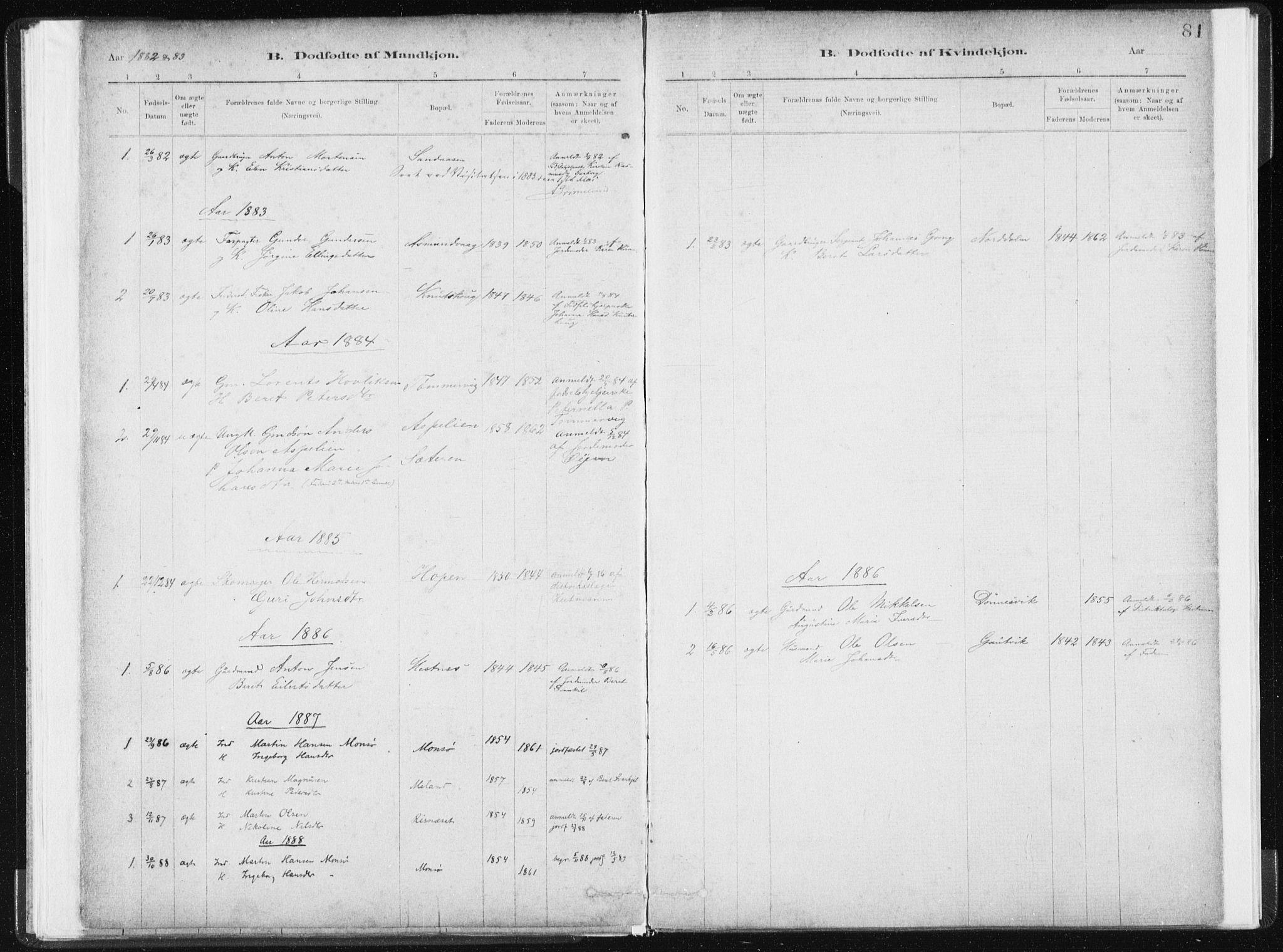 SAT, Ministerialprotokoller, klokkerbøker og fødselsregistre - Sør-Trøndelag, 634/L0533: Ministerialbok nr. 634A09, 1882-1901, s. 81