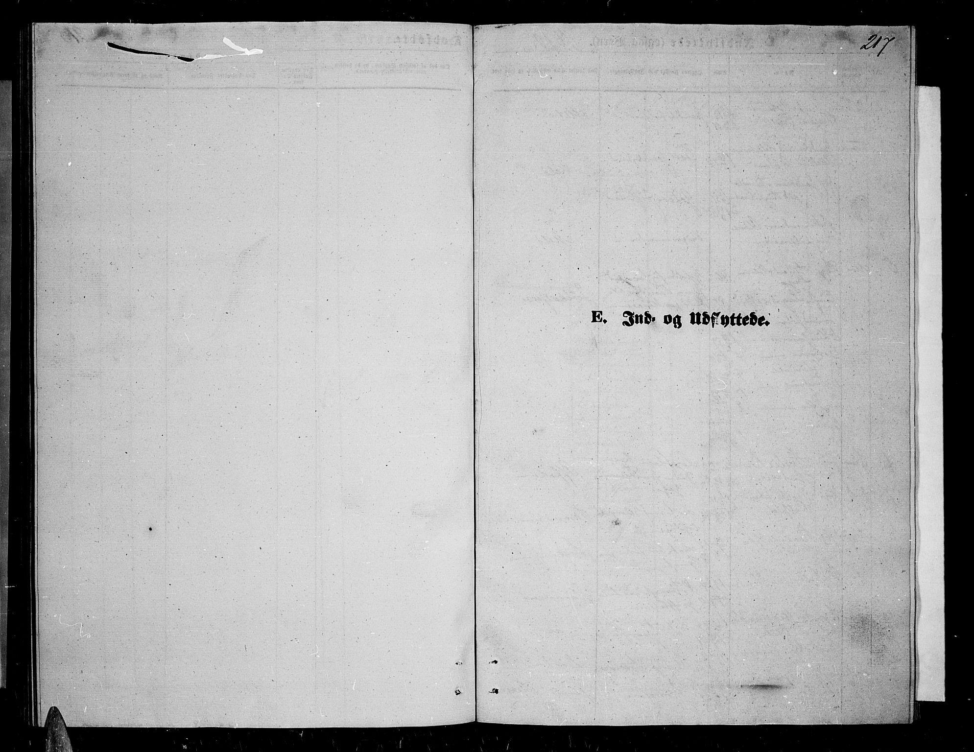 SATØ, Trondenes sokneprestkontor, H/Hb/L0009klokker: Klokkerbok nr. 9, 1870-1876, s. 217