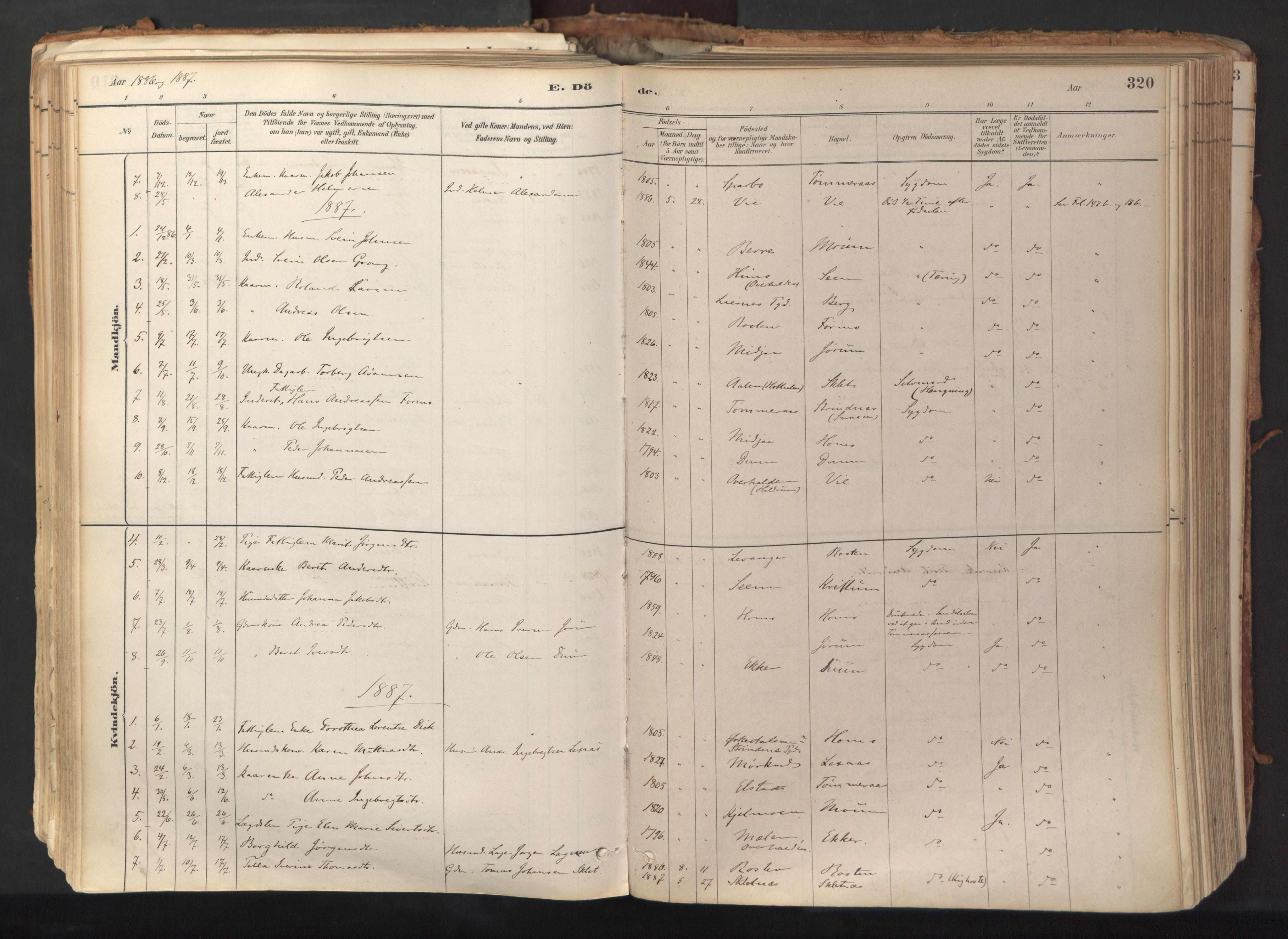 SAT, Ministerialprotokoller, klokkerbøker og fødselsregistre - Nord-Trøndelag, 758/L0519: Ministerialbok nr. 758A04, 1880-1926, s. 320