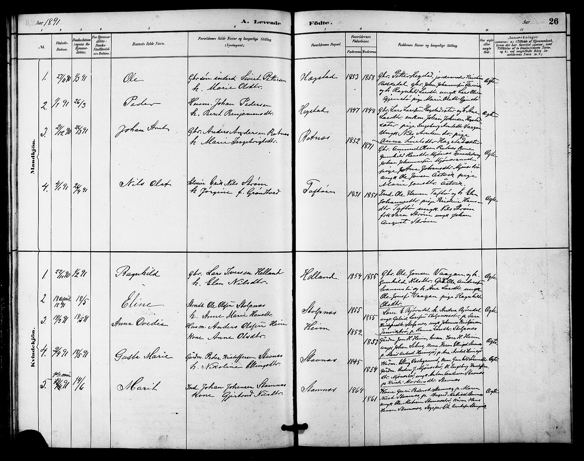 SAT, Ministerialprotokoller, klokkerbøker og fødselsregistre - Sør-Trøndelag, 633/L0519: Klokkerbok nr. 633C01, 1884-1905, s. 26