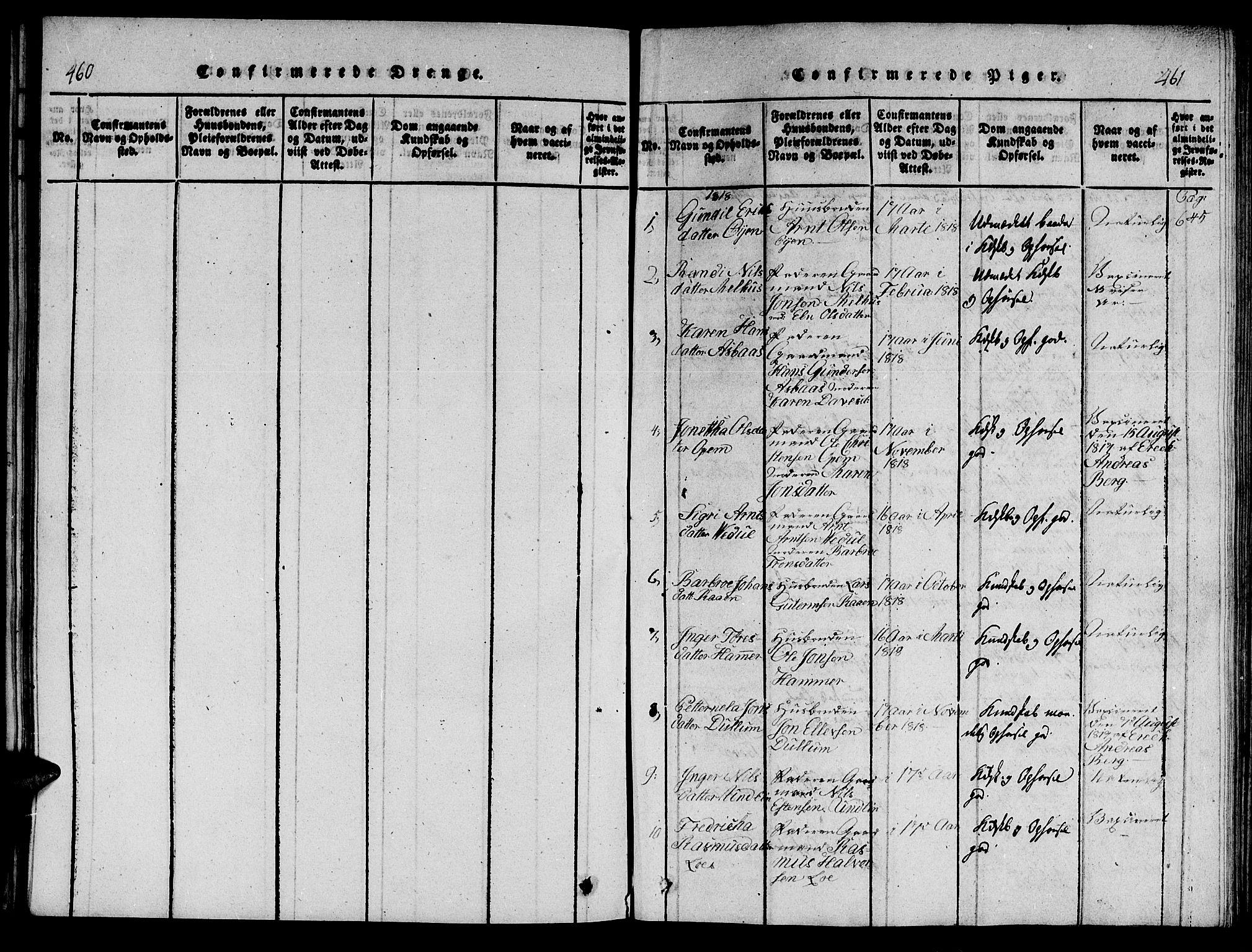 SAT, Ministerialprotokoller, klokkerbøker og fødselsregistre - Nord-Trøndelag, 714/L0132: Klokkerbok nr. 714C01, 1817-1824, s. 460-461