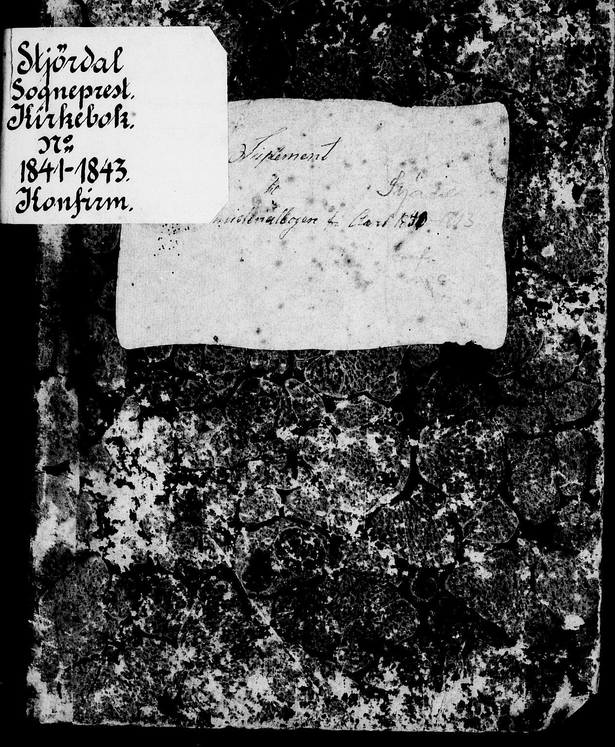 SAT, Ministerialprotokoller, klokkerbøker og fødselsregistre - Nord-Trøndelag, 709/L0073: Ministerialbok nr. 709A13, 1841-1844