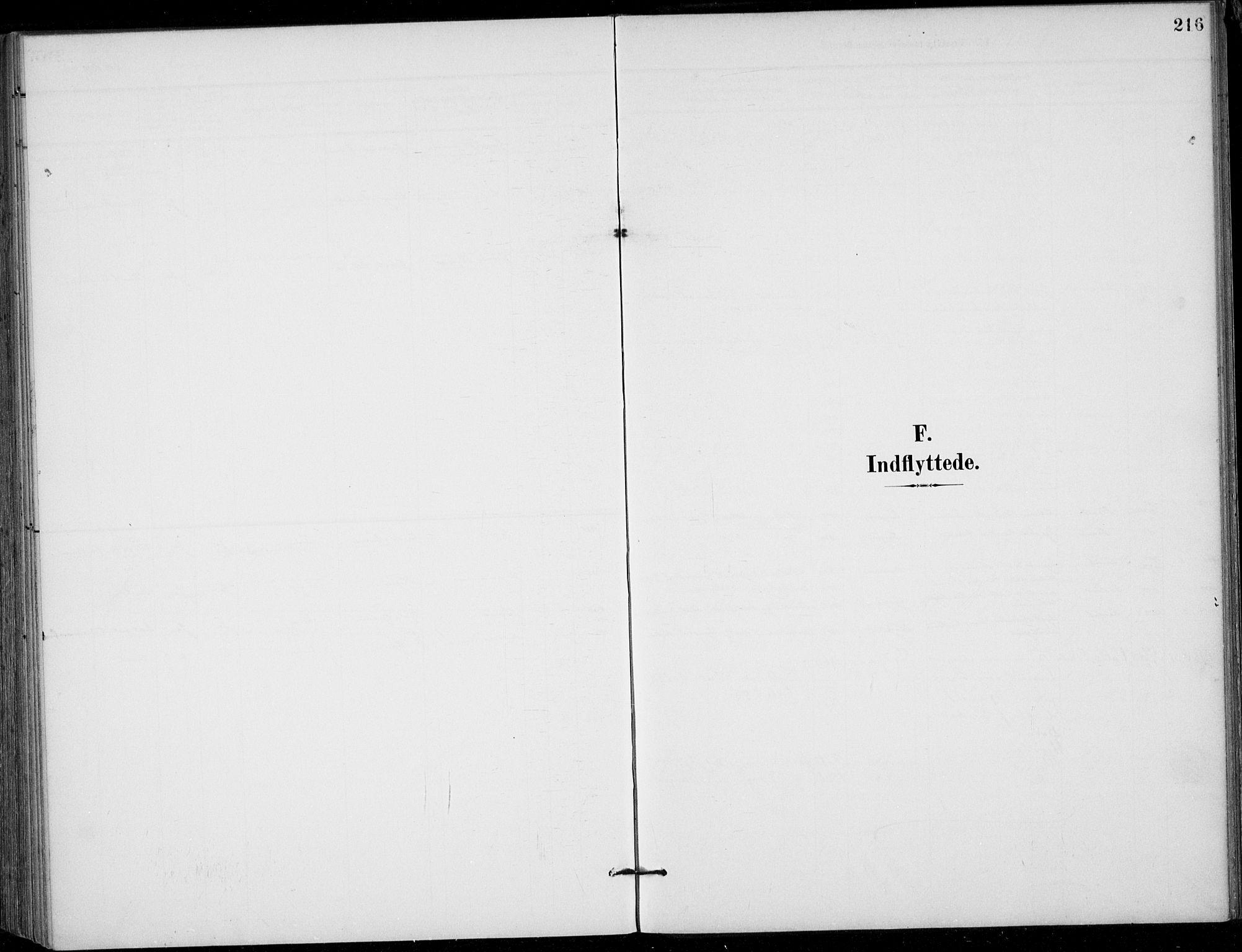 SAKO, Siljan kirkebøker, F/Fa/L0003: Ministerialbok nr. 3, 1896-1910, s. 216