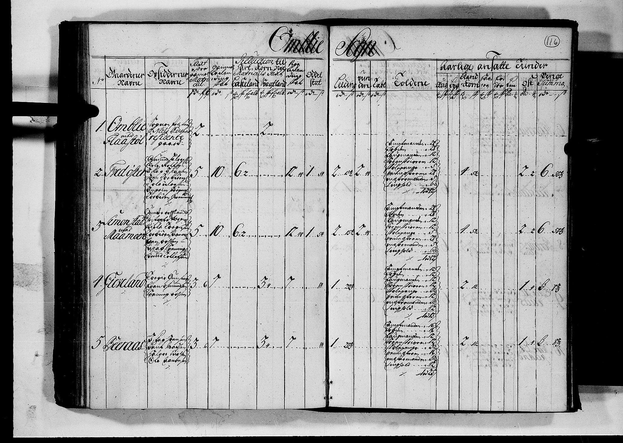 RA, Rentekammeret inntil 1814, Realistisk ordnet avdeling, N/Nb/Nbf/L0126: Råbyggelag matrikkelprotokoll, 1723, s. 115b-116a