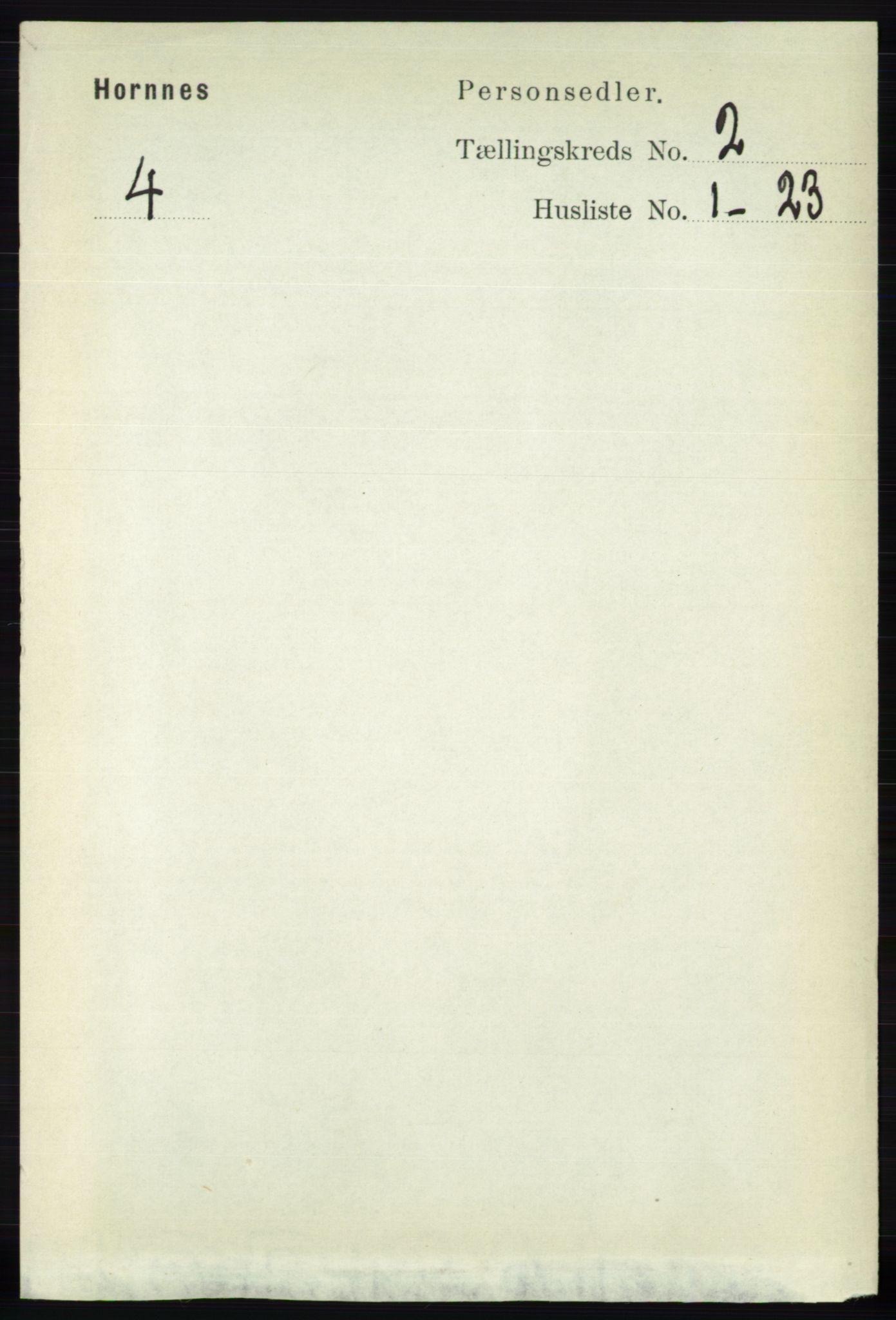 RA, Folketelling 1891 for 0936 Hornnes herred, 1891, s. 217